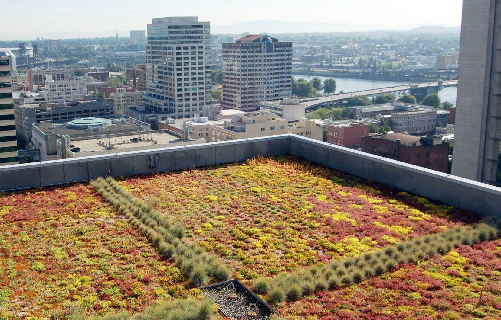 Depuis 2008, à Portland, dans l'Ouest américain, 50millions ont été investis et 15 hectares de toits verts et de jardins sur les toits ont été aménagés. Le paysage de la ville en a été transformé.