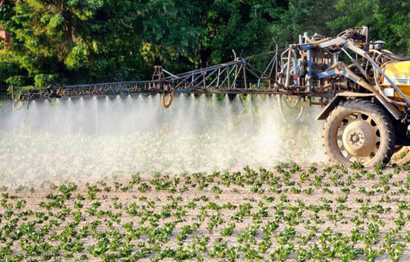 Professeur et chercheur en biologie moléculaire à l'Université de Sherbrooke, Luc Gaudreau croit que l'usage des pesticides peut entraîner des perturbations importantes dans le fonctionnement des cellules humaines.