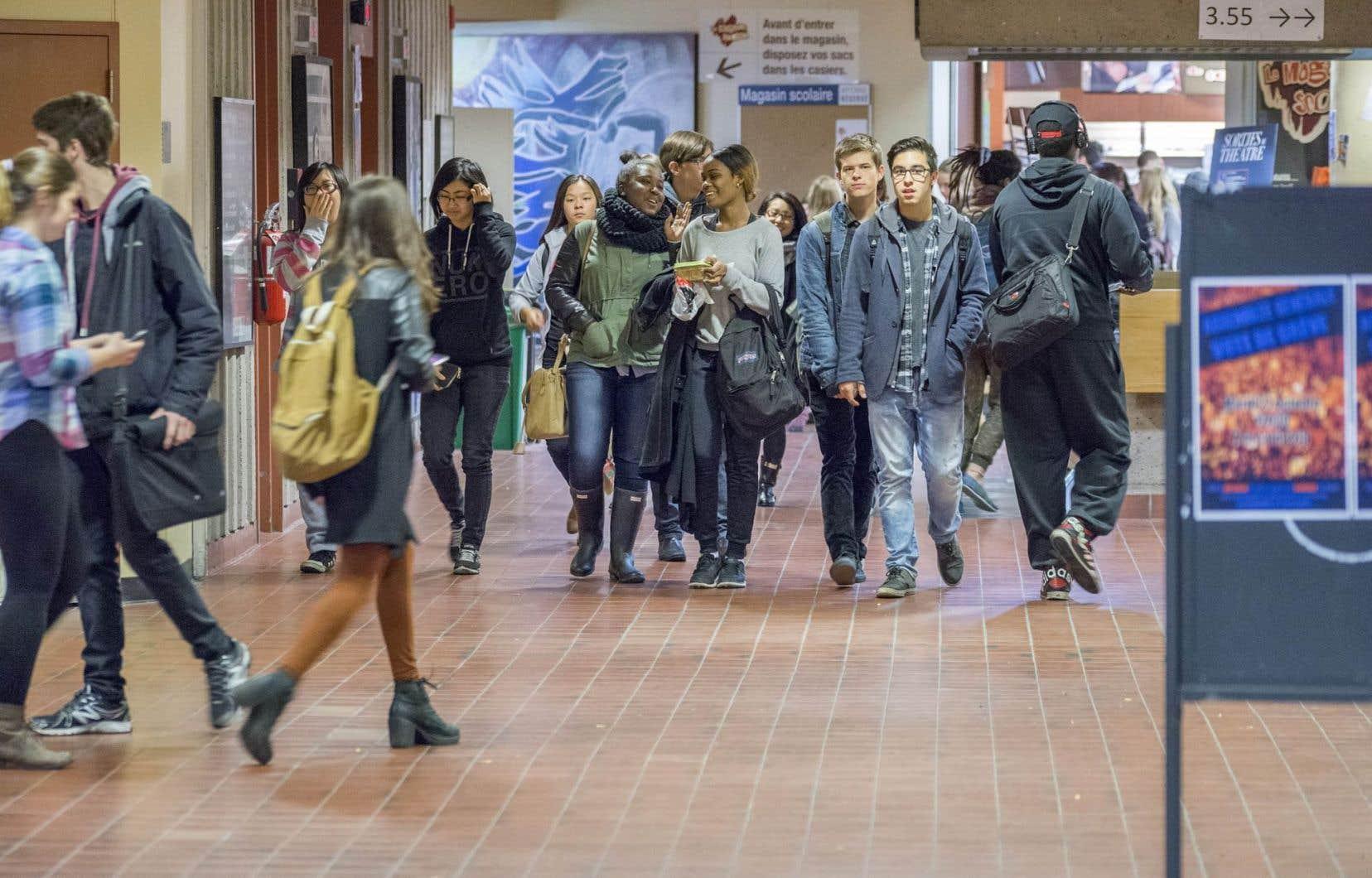 Un étudiant qui n'aurait pas réussi ses épreuves de français ou de philosophie pourrait obtenir ce nouveau diplôme technique et rejoindre ainsi rapidement le marché du travail.
