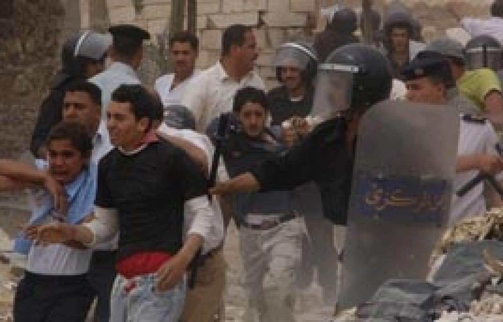 Une quinzaine d'Égyptiens ont été blessés hier dans des affrontements liés aux abattages de porcs au Caire.