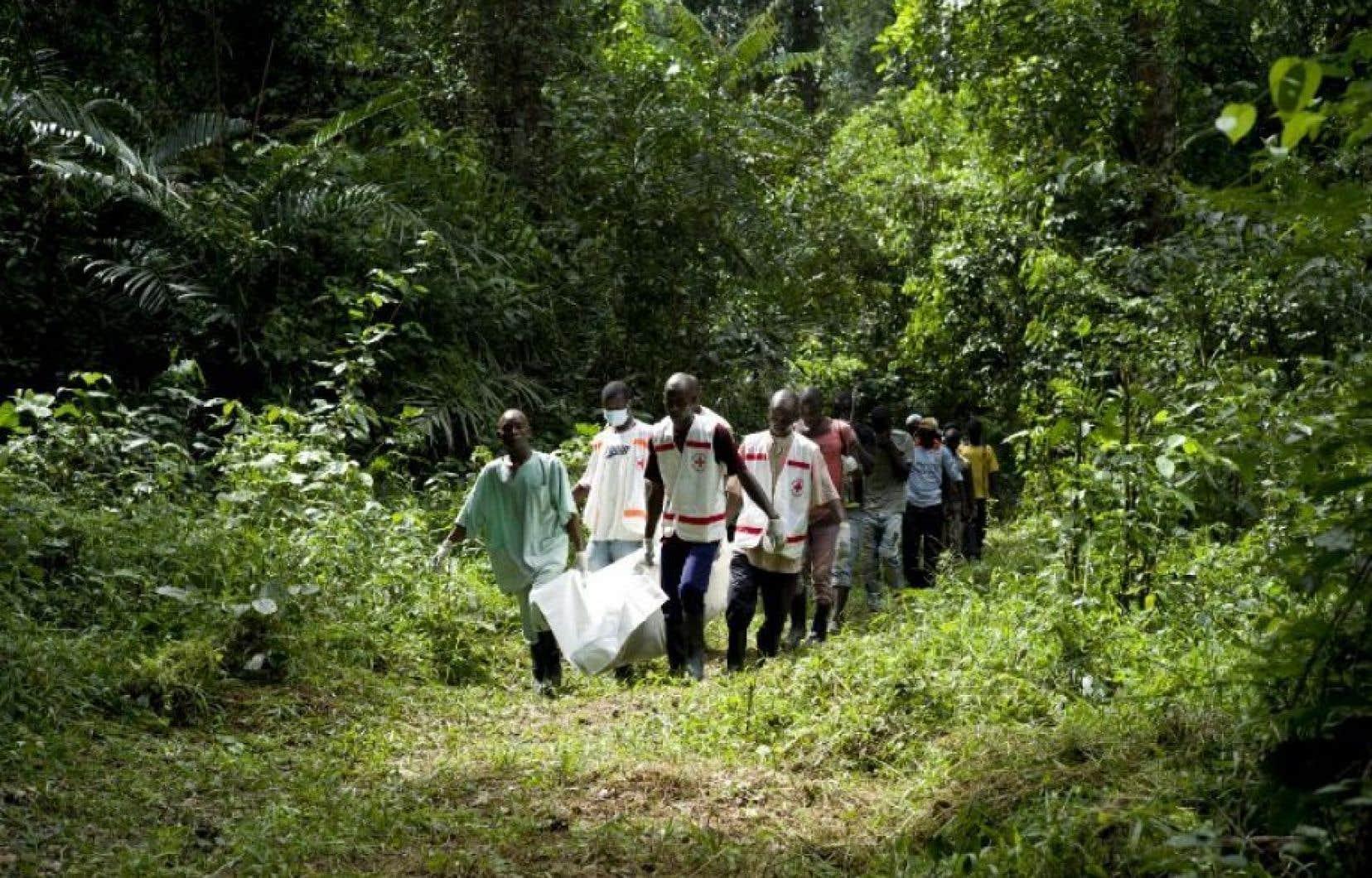Des travailleurs de la Croix-Rouge guinéenne transportent le corps d'une victime d'Ebola à Momo Kanèdou, en Guinée, l'un des pays les plus touchés par l'épidémie.