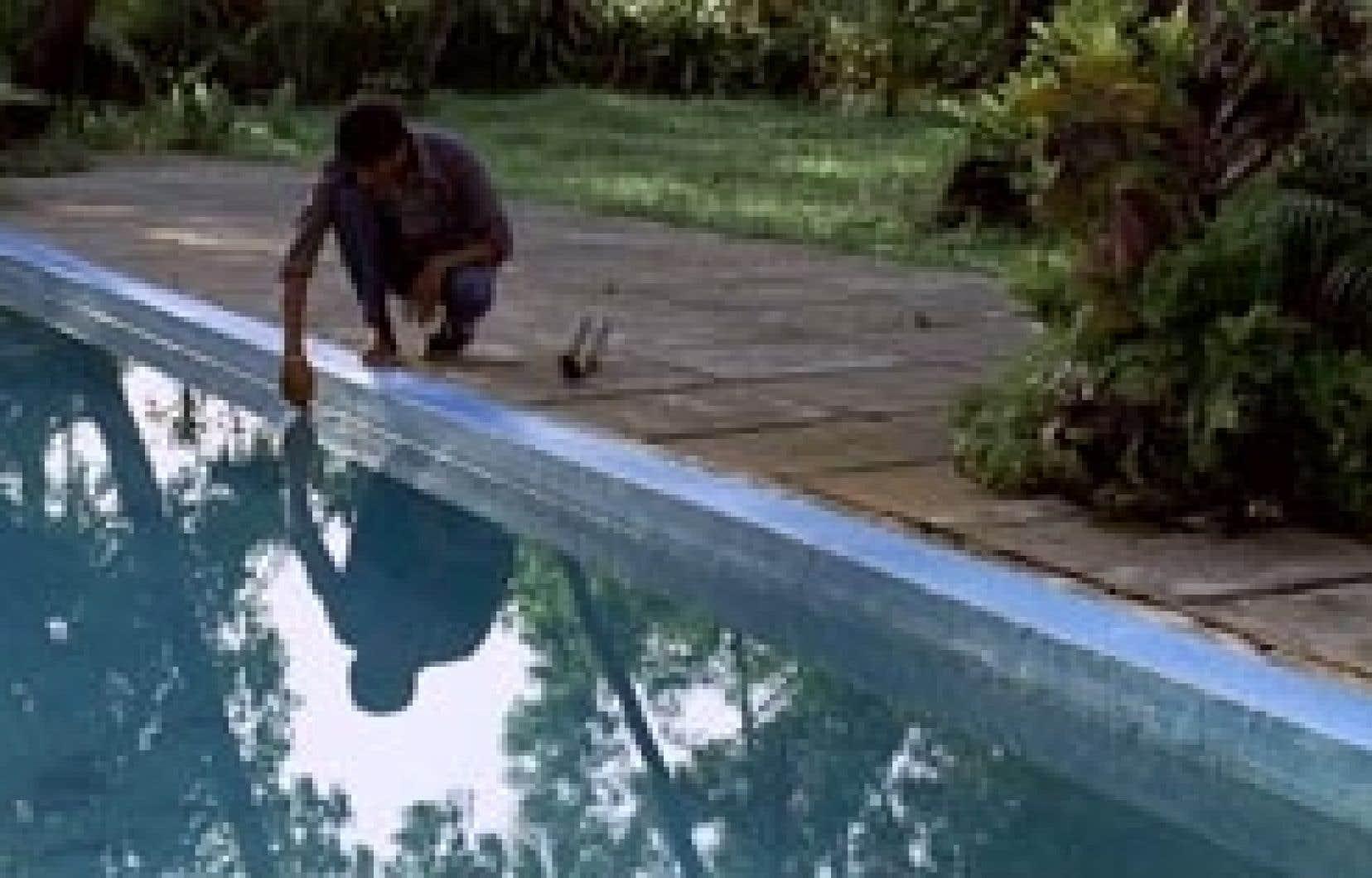 The Pool s'inspire d'une nouvelle de Randy Russell qui se déroule aux États-Unis et maintenant transposée, avec la complicité de l'auteur, dans la petite ville de Panjim, dans l'État indien du Goa.