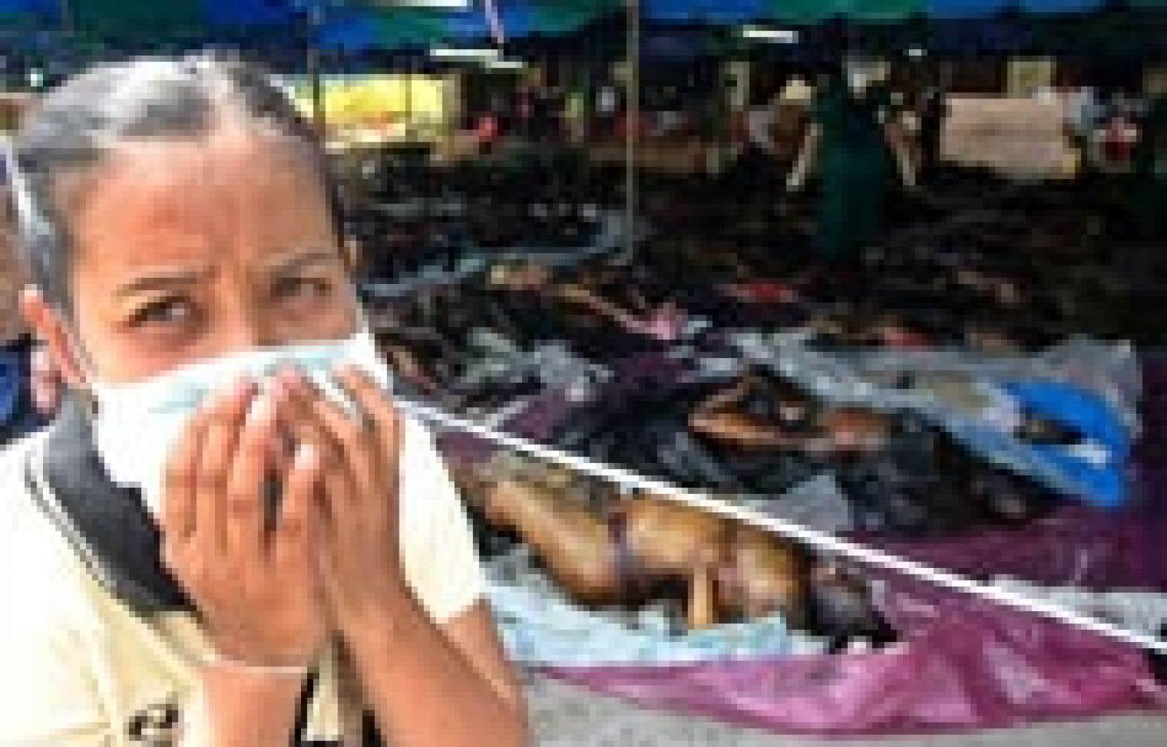Une femme étouffe un cri d'horreur après avoir vu les corps de victimes des tsunamis à Krabi, en Thaïlande.