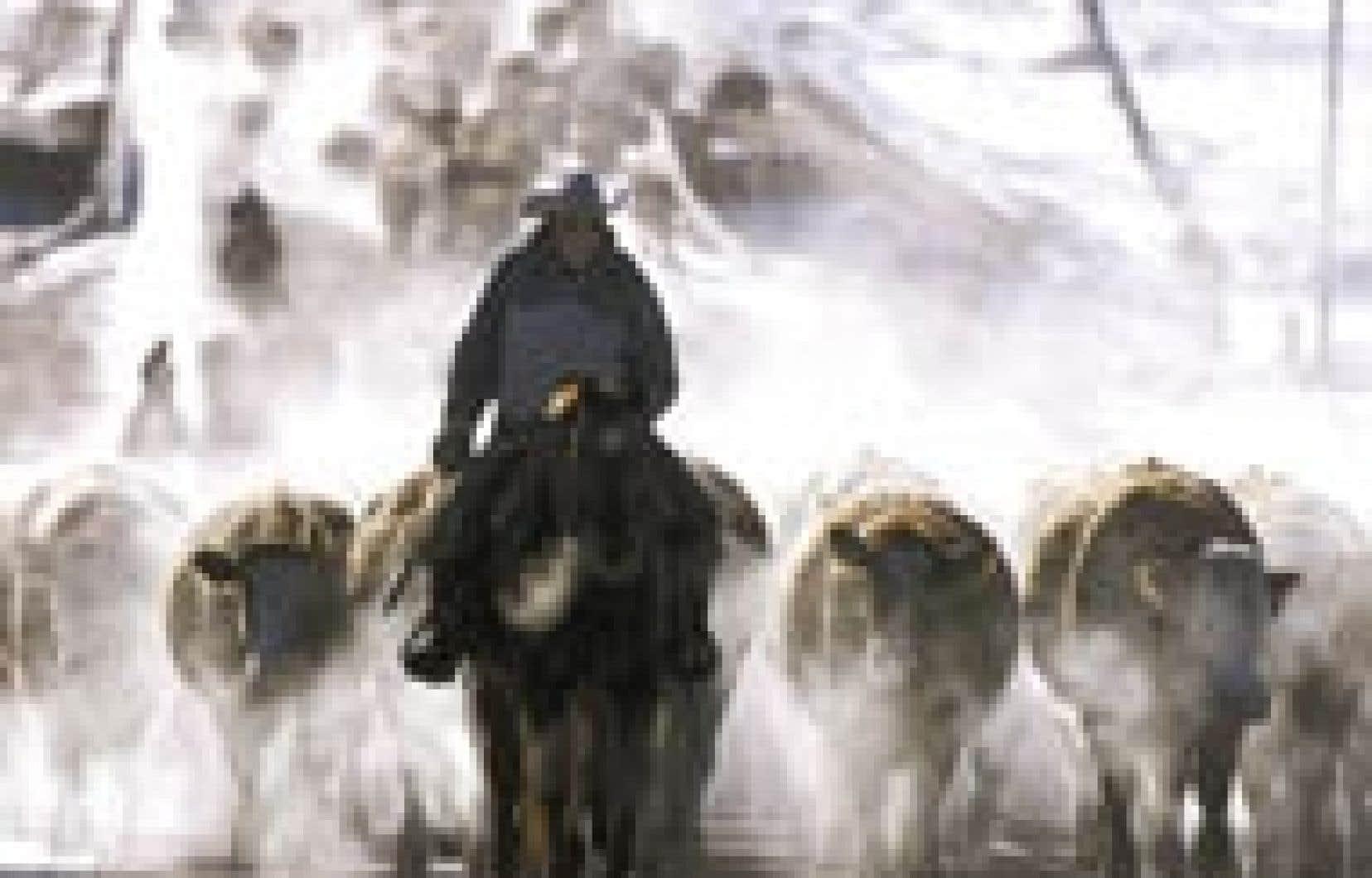 Au grand soulagement des producteurs, le cas révélé hier ne devrait pas affecter le redémarrage du commerce bovin transfrontalier.