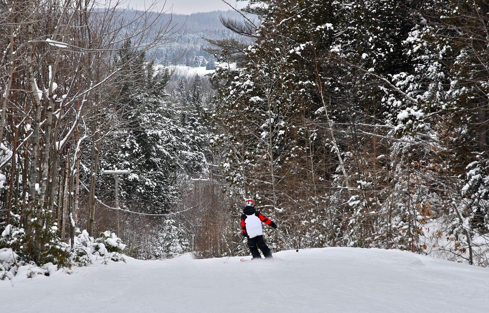 Répartie sur trois versants et dotée de 150 mètres de dénivelé, la station Ski Montcalm compte 24 pistes, dont l'essentiel est de niveau débutant. Certaines forment de jolis couloirs plutôt étroits où on se sent plus près de la forêt.