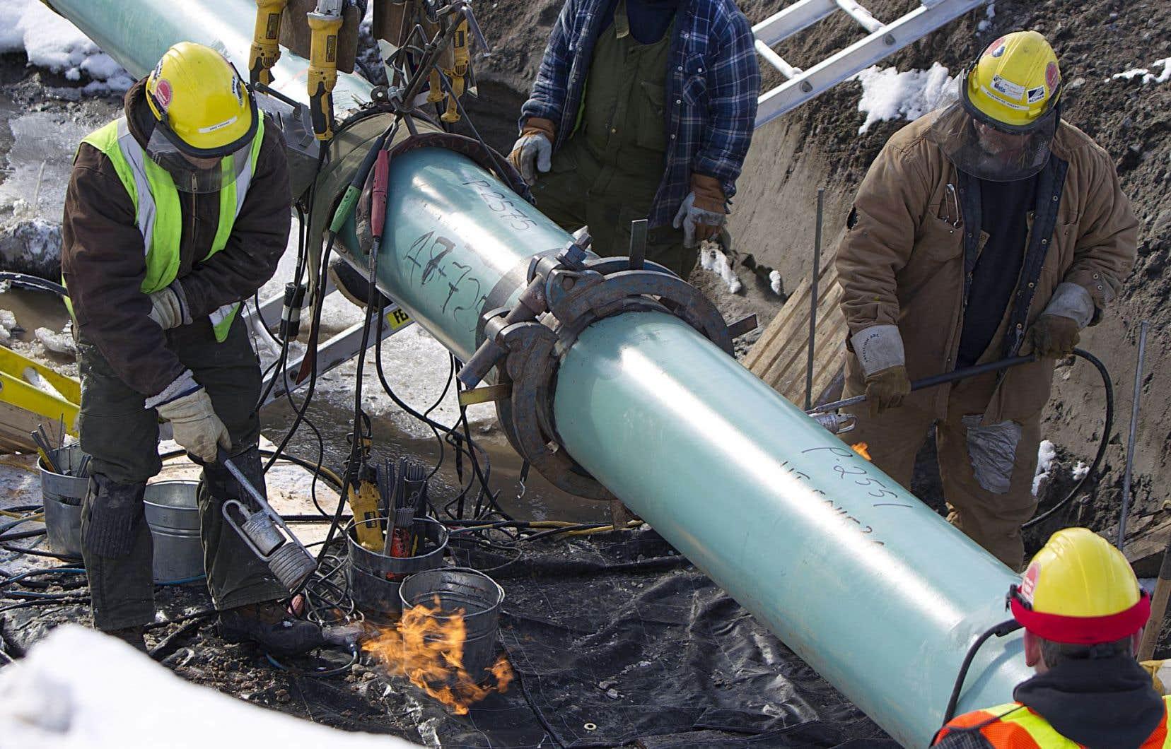 Québec n'a toujours pas reçu l'avis de projet de TransCanada pour les 700 kilomètres de pipeline à être construits.