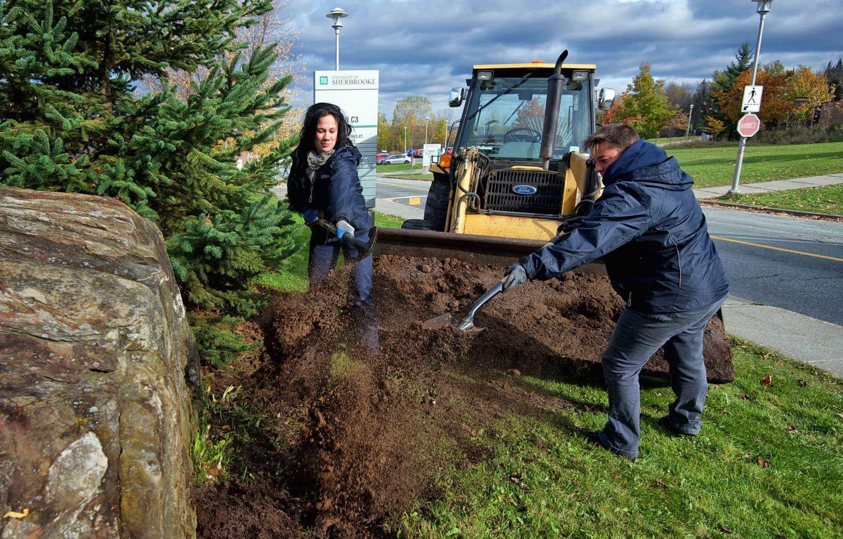 Le compost réalisé grâce aux déchets récupérés sur le campus de l'Université de Sherbrooke sert ensuite à l'entretien des terrains.