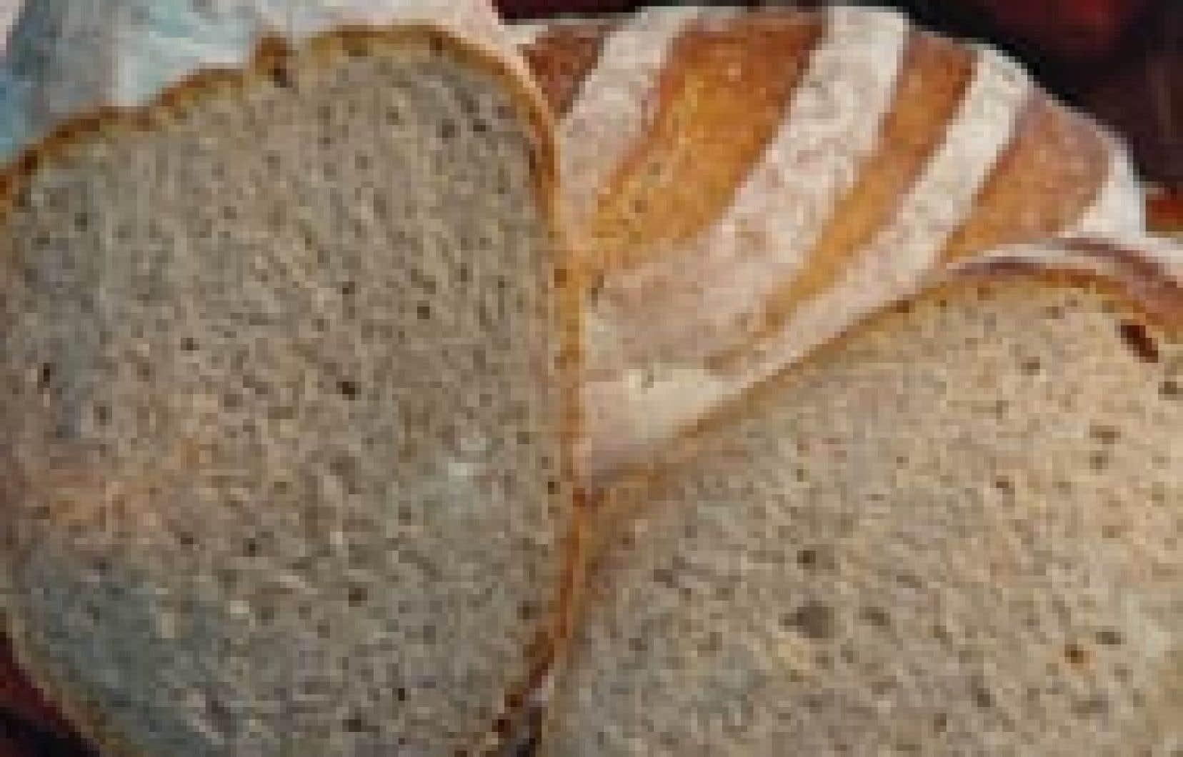 Chez Première Moisson, on classe les pains en trois catégories. Il y a d'abord les pains blancs aux formes multiples, où trône en reine la baguette française. Ensuite on trouve les pains spéciaux, qui comprennent autant le pain de blé entier que