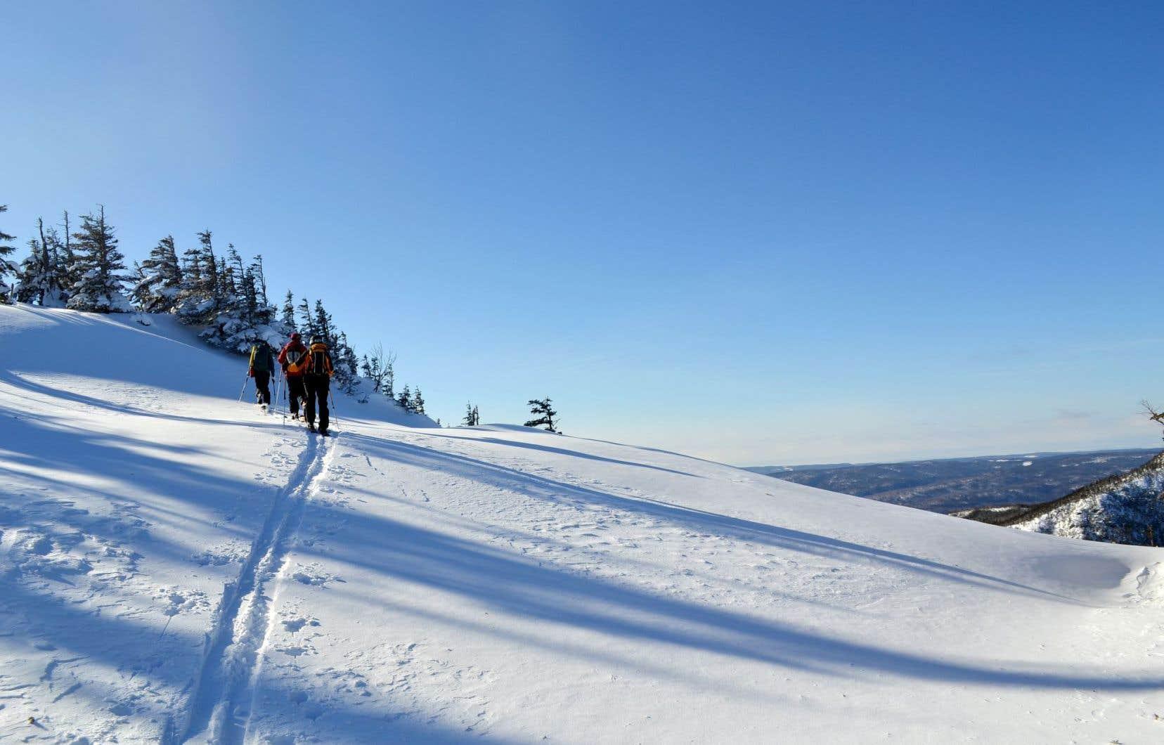 On effectue l'ascension en utilisant la partie de la fixation qui permet de détacher le talon du ski. Puis, c'est l'envol. Dans la poudreuse fraîchement tombée, les skis, qui font office désormais de skis alpins, font leurs propres traces, contournant les arbres, guettant les éclaircies, filant dans l'après-midi… jusqu'à la première chute.