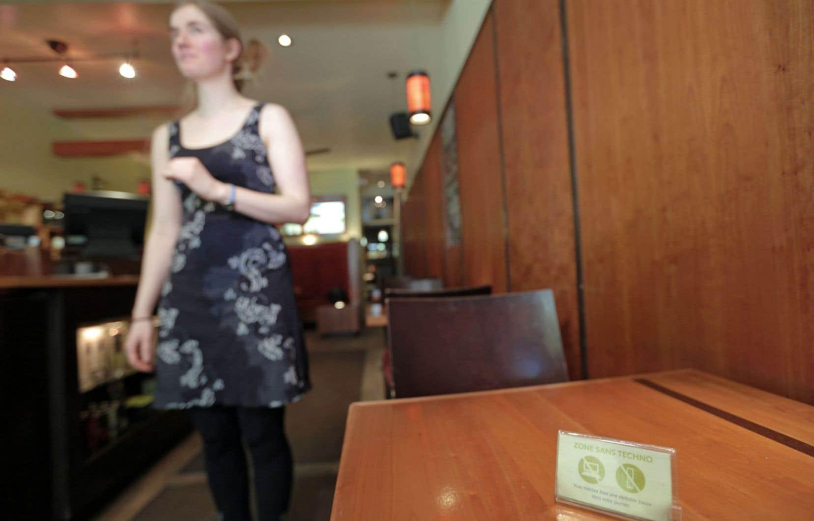 Chez Camellia Sinensis, on a bloqué le réseau sans fil il y a de cela cinq ans afin que les clients puissent savourer pleinement l'expérience d'une dégustation de thé dans un lieu calme.