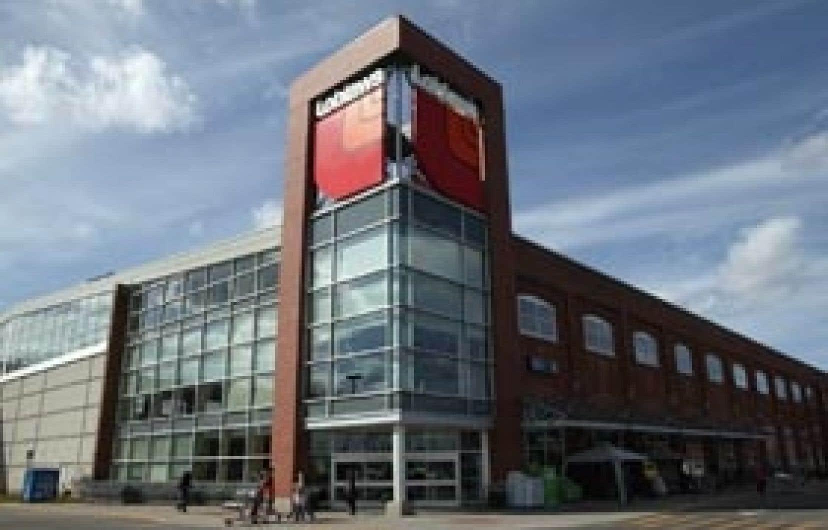 Loblaws a réduit la taille de ses circulaires, ce qui a permis d'économiser 5200 tonnes de papier.