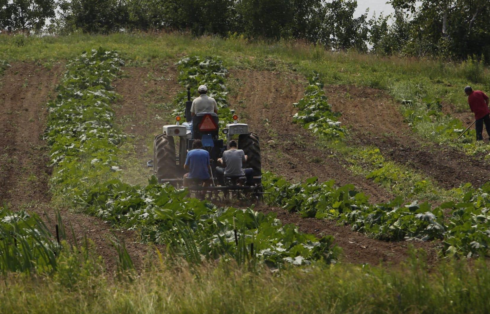 La zone agricole perd 4000 hectares par année au dézonage pour le développement de toute nature, soit l'équivalent de la superficie de l'île de Montréal à tous les 10 ans.