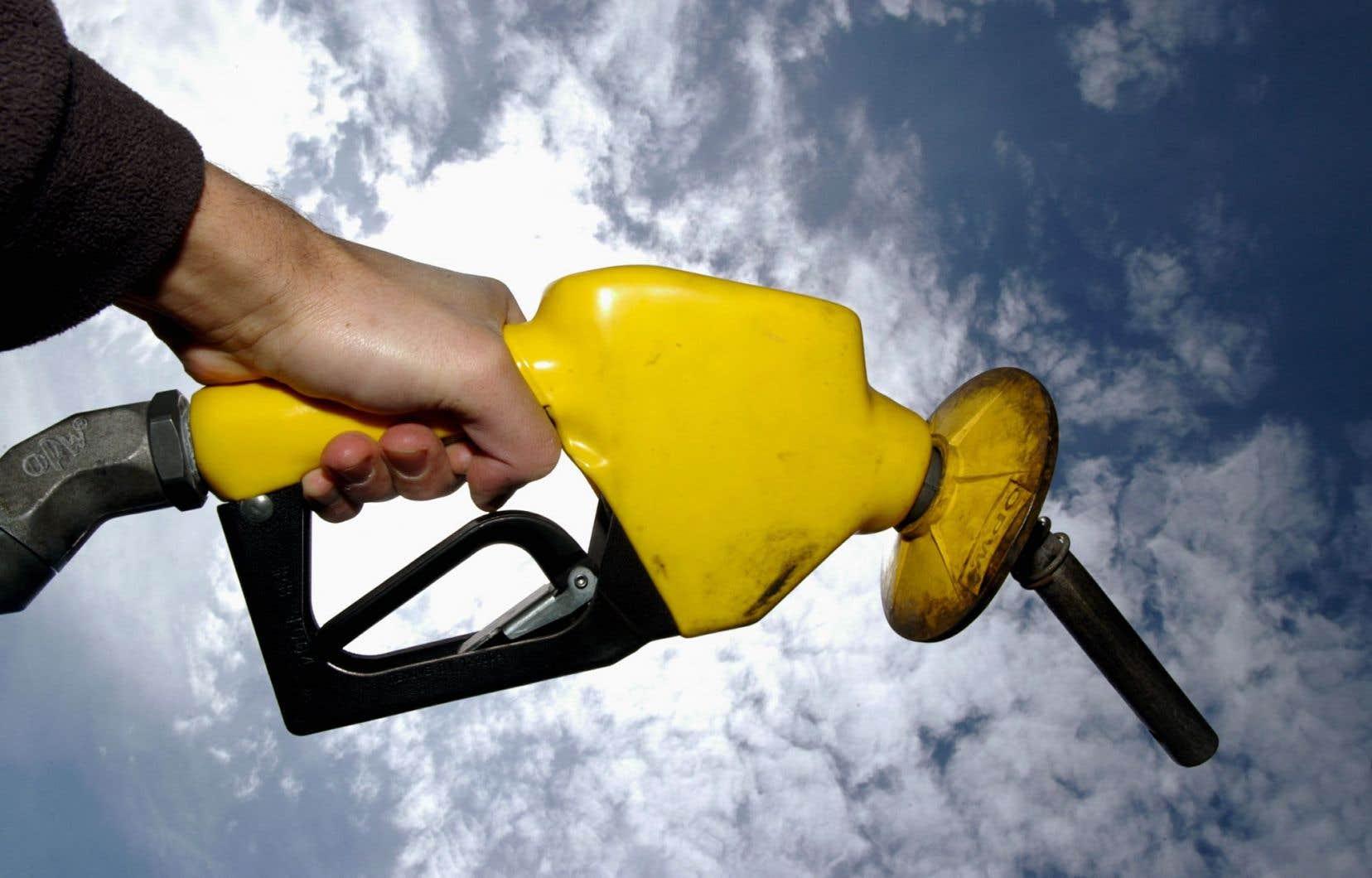 De nombreux répondants ont cité à tort le pétrole comme une ressource renouvelable.