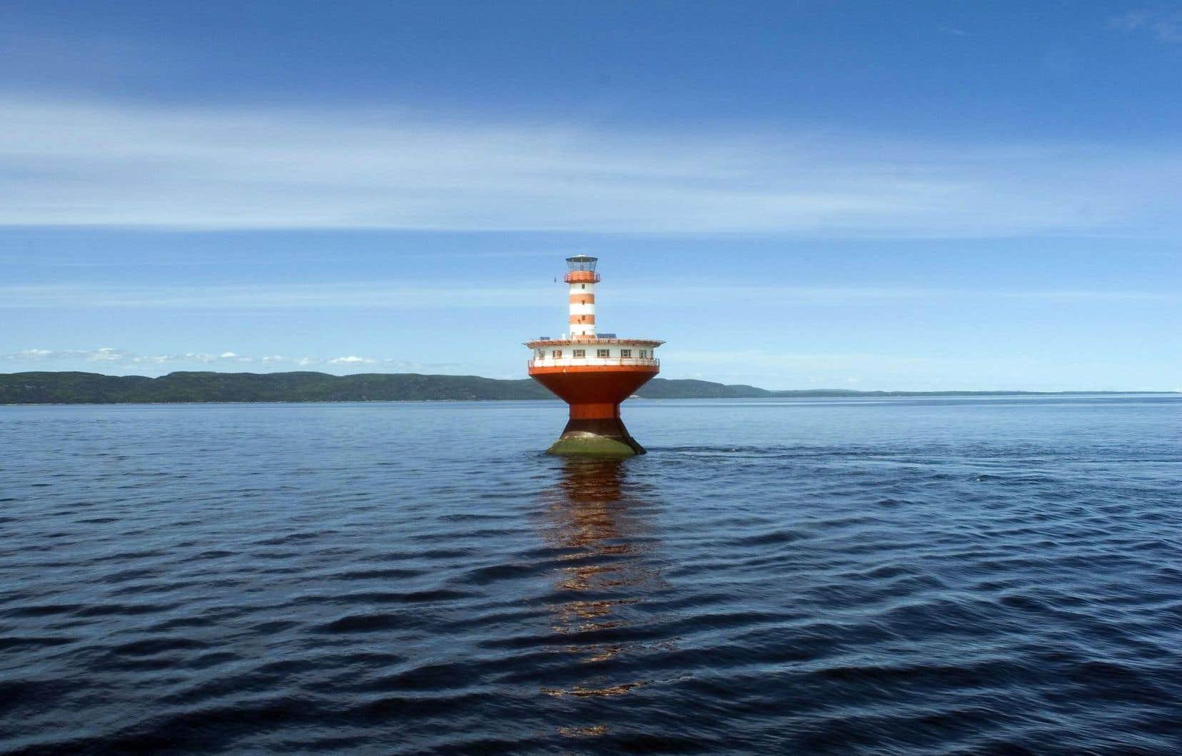 À l'heure actuelle, il existe une seule zone maritime formellement protégée dans tout le Saint-Laurent.