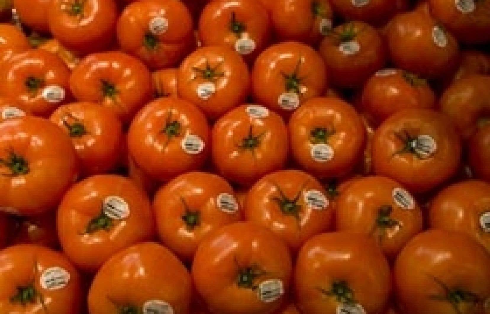 Actuellement, près de 6000 produits se présentent dans les épiceries comme étant des «Aliments du Québec», dont les tomates Savoura.