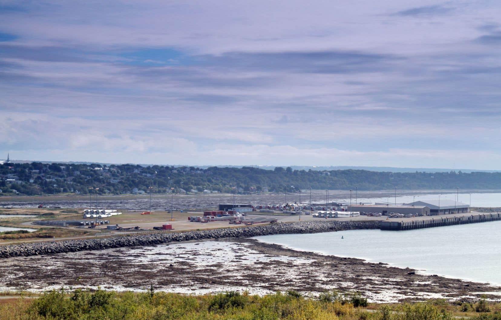 Une augmentation de la circulation maritime dans le secteur pourrait mettre en danger la population de bélugas du Saint-Laurent.