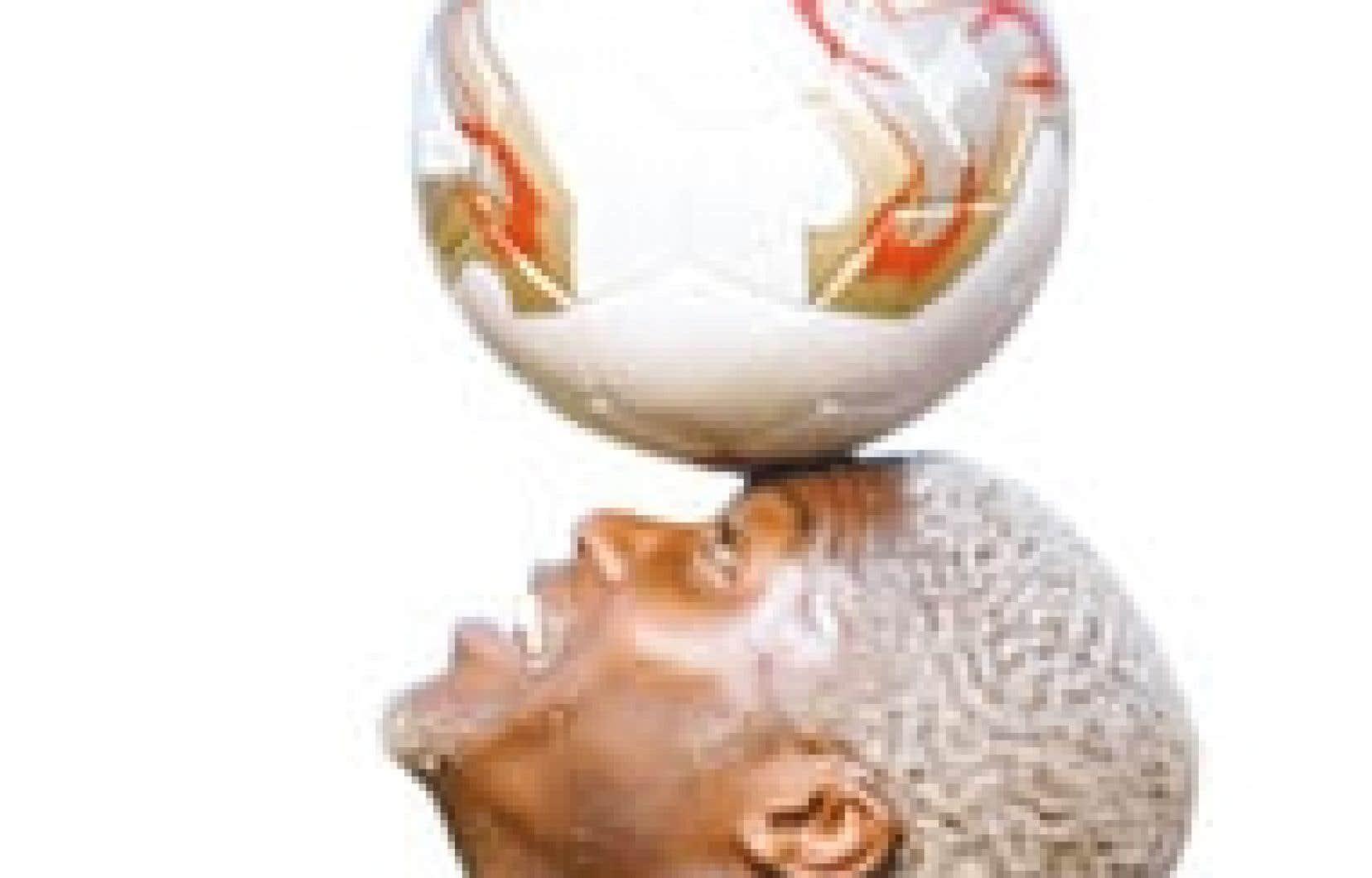 Les Bleus comptent dans leurs rangs le meilleur buteur de la Premier League anglaise, du Calcio italien et de la première division française, Djibril Cissé.