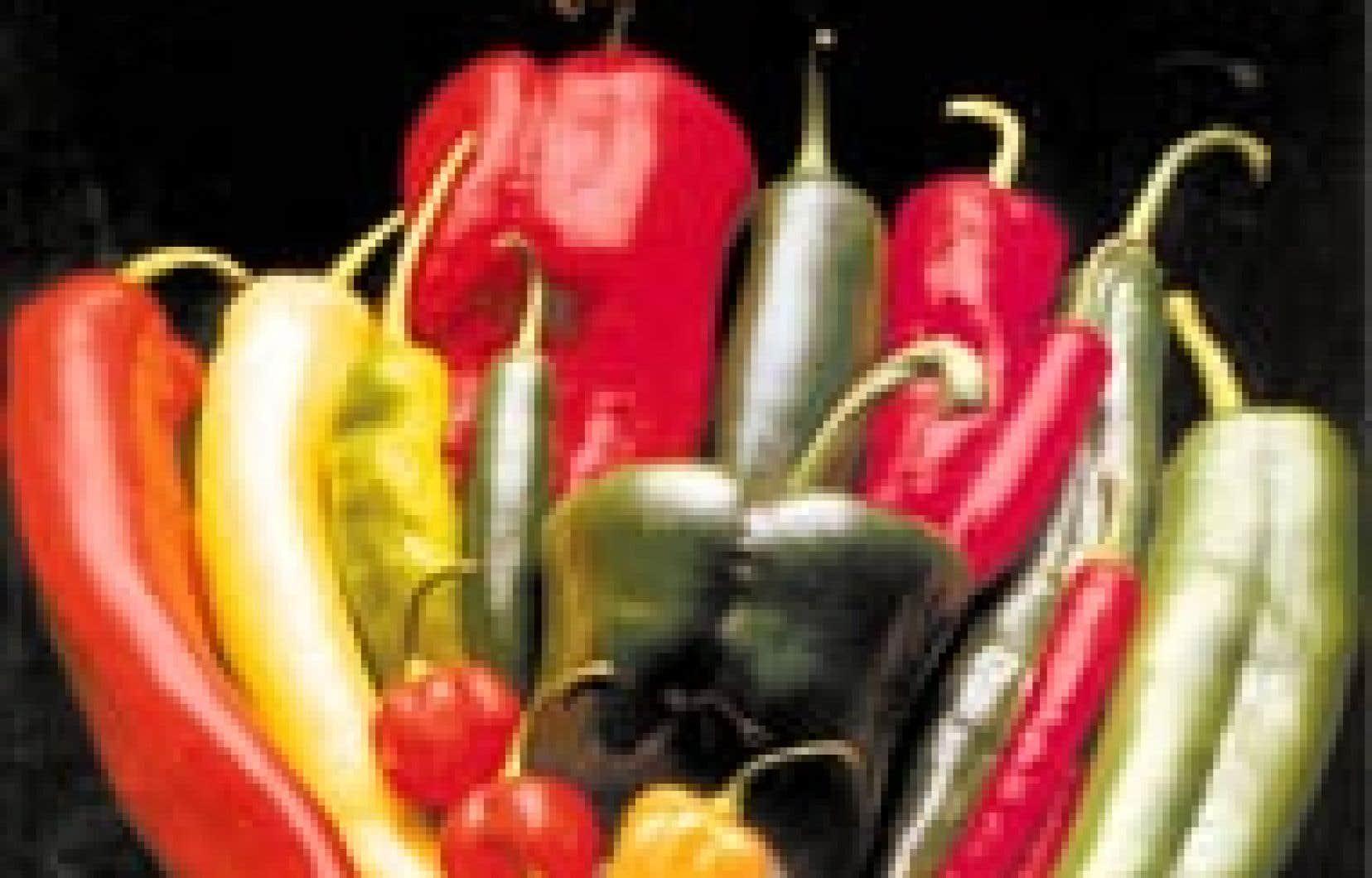 On s'entend généralement pour appeler poivron le gros piment doux que l'on retrouve dans tous les comptoirs de fruits et légumes. On utilise le terme piment pour tous les autres. - Photo Petoseed