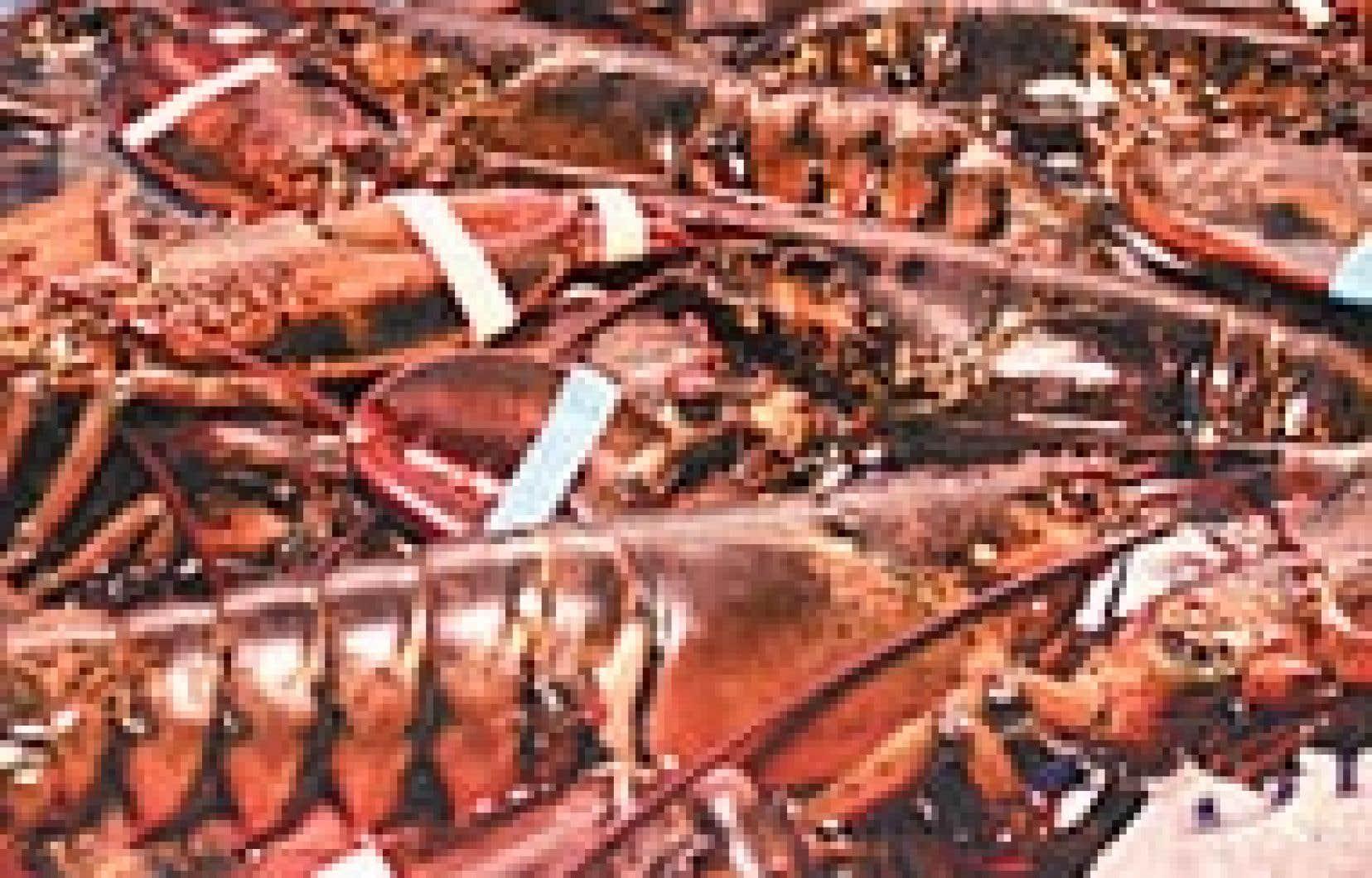 Quelques homards choisis.