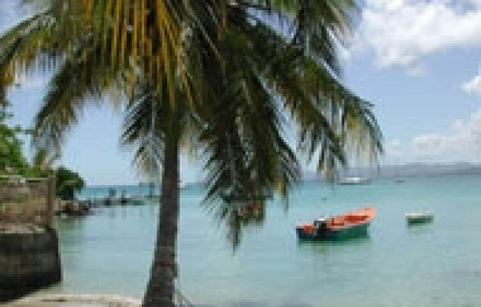 Oui, la Martinique a les plages, les palmiers, la chaleur, le sable fin, mais non, ce n'est pas une destination soleil comme les autres.