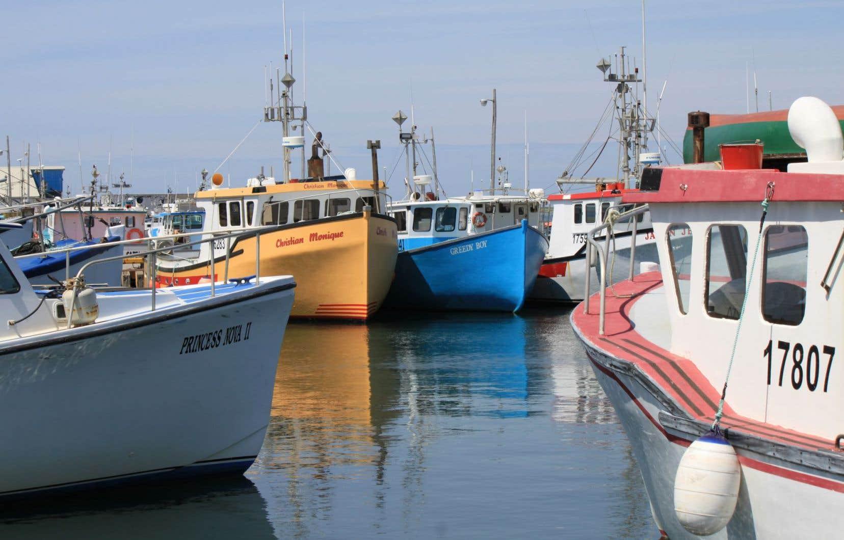 La question des pêcheries représente un moteur économique significatif pour l'est du pays.