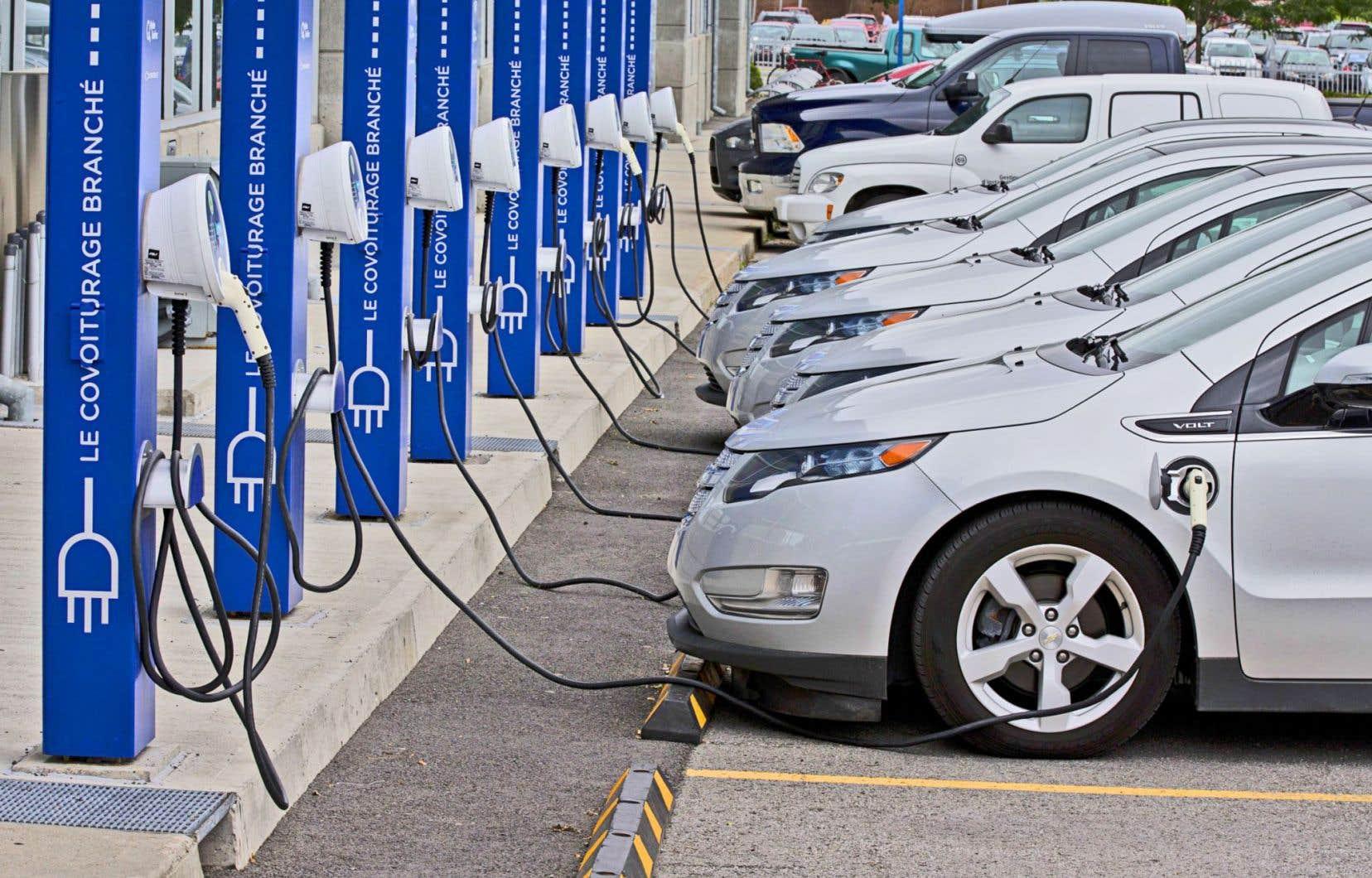 À l'heure actuelle, 7000 véhicules électriques circulent sur les routes du Québec.