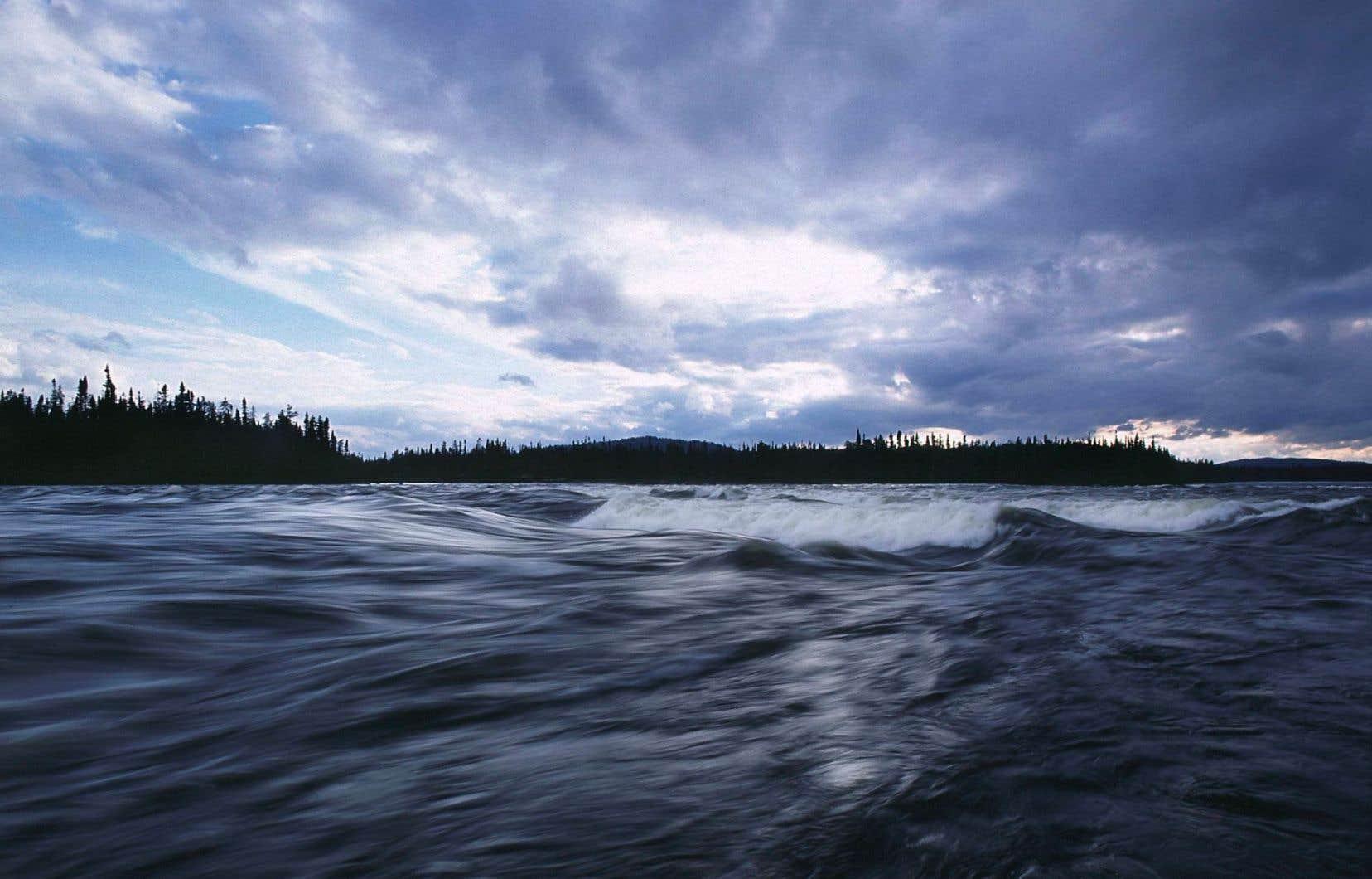Le professeur de droit de l'Université de Calgary Martin Olszynski a entre autres constaté un abandon «pas tellement graduel» du secteur de la protection de l'habitat des poissons.