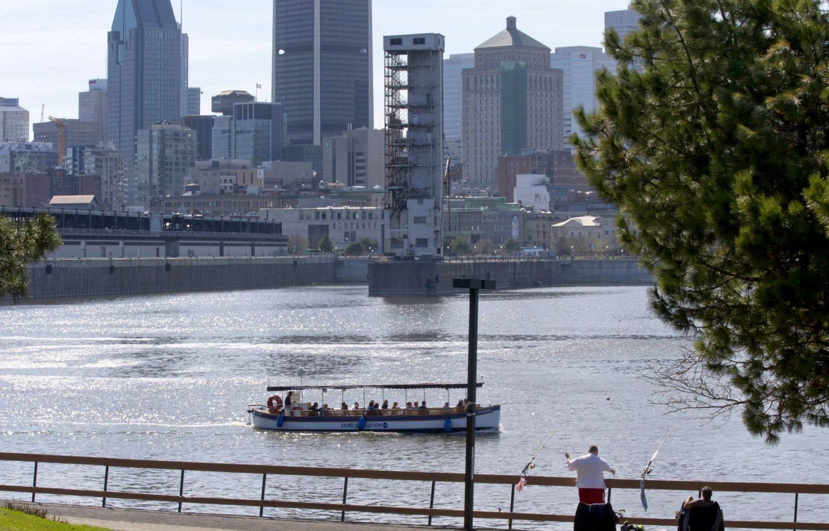De façon exceptionnelle, la Ville de Montréal va laisser une partie de ses égouts se déverser directement dans l'eau pendant sept jours, sur sa rive sud.