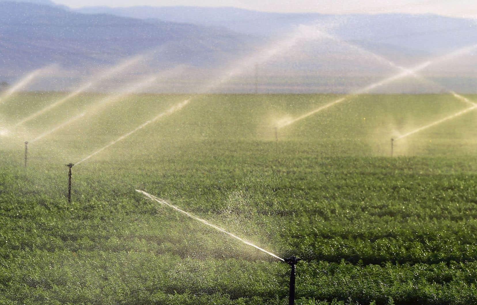 Le Fonds Desjardins SociéTerre Environnement regarde principalement les émissions de GES et la consommation d'eau.