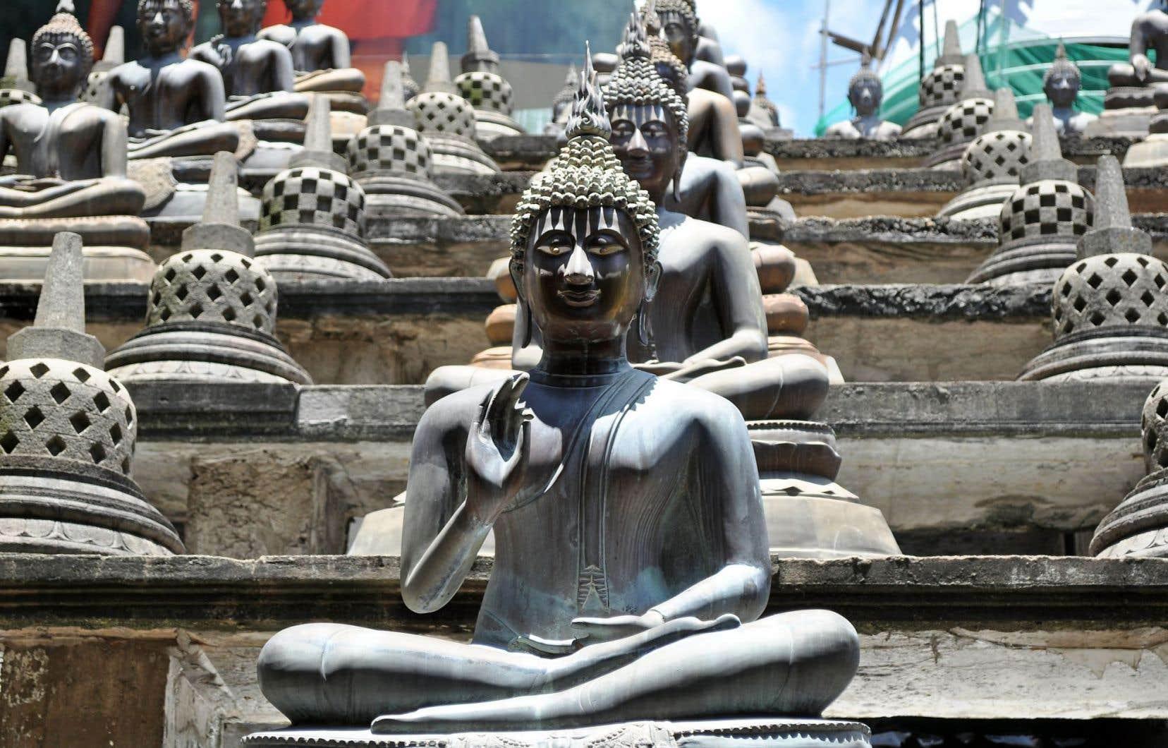 Le temple bouddhiste Gangaramaya est un écosystème surchargé où tout s'arrête, étrangement.