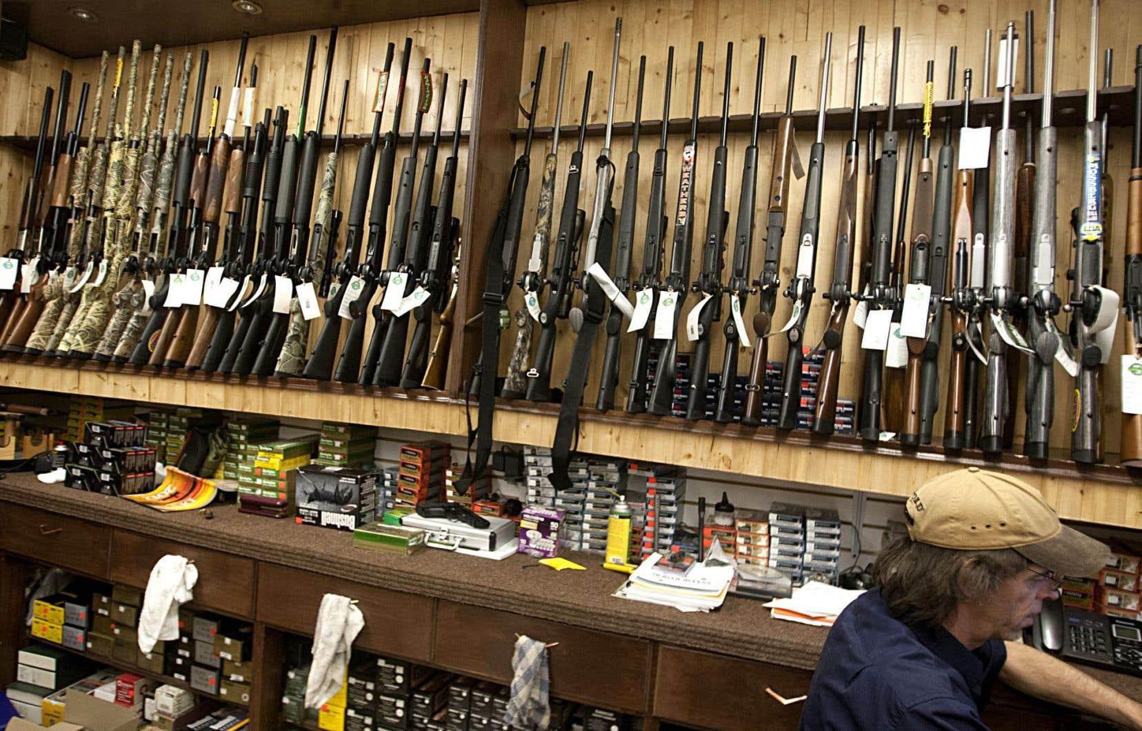 Le registre des armes à feu est au cœur de la polémique.