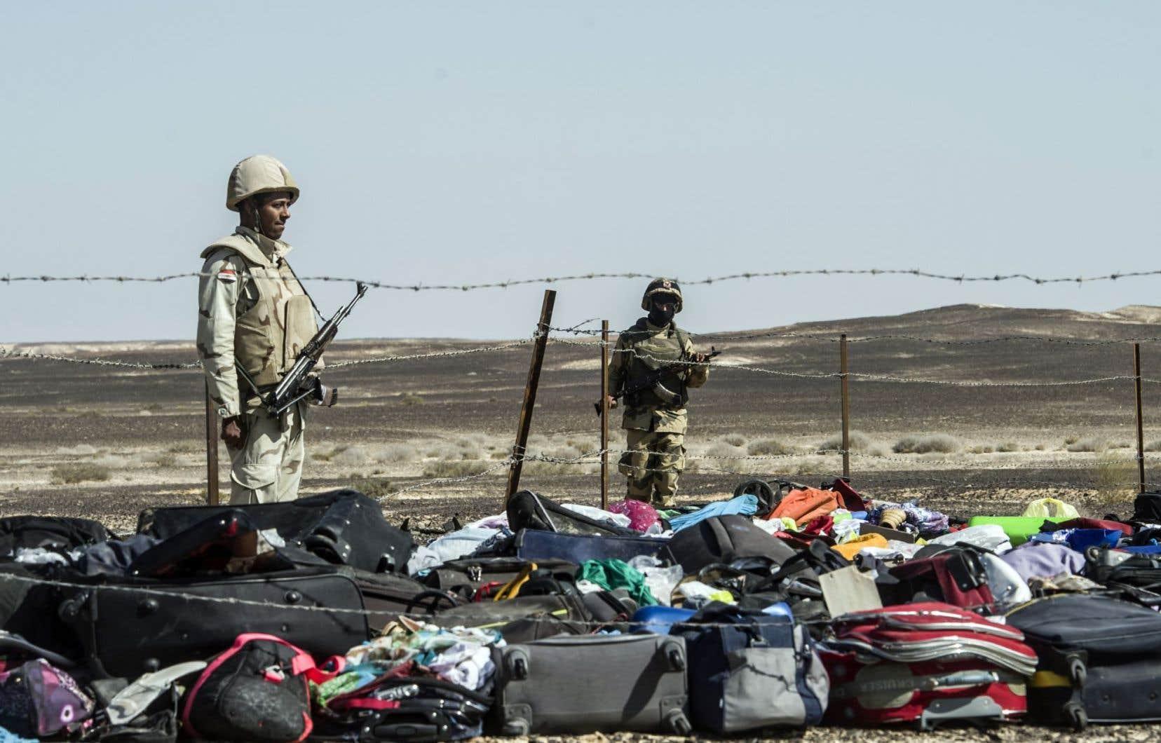 Les recherches pour trouver les corps des victimes de l'écrasement de l'Airbus A321-200 de la compagnie russe Metrojet se sont poursuivies dimanche et leurs bagages ont été réunis sur les lieux.