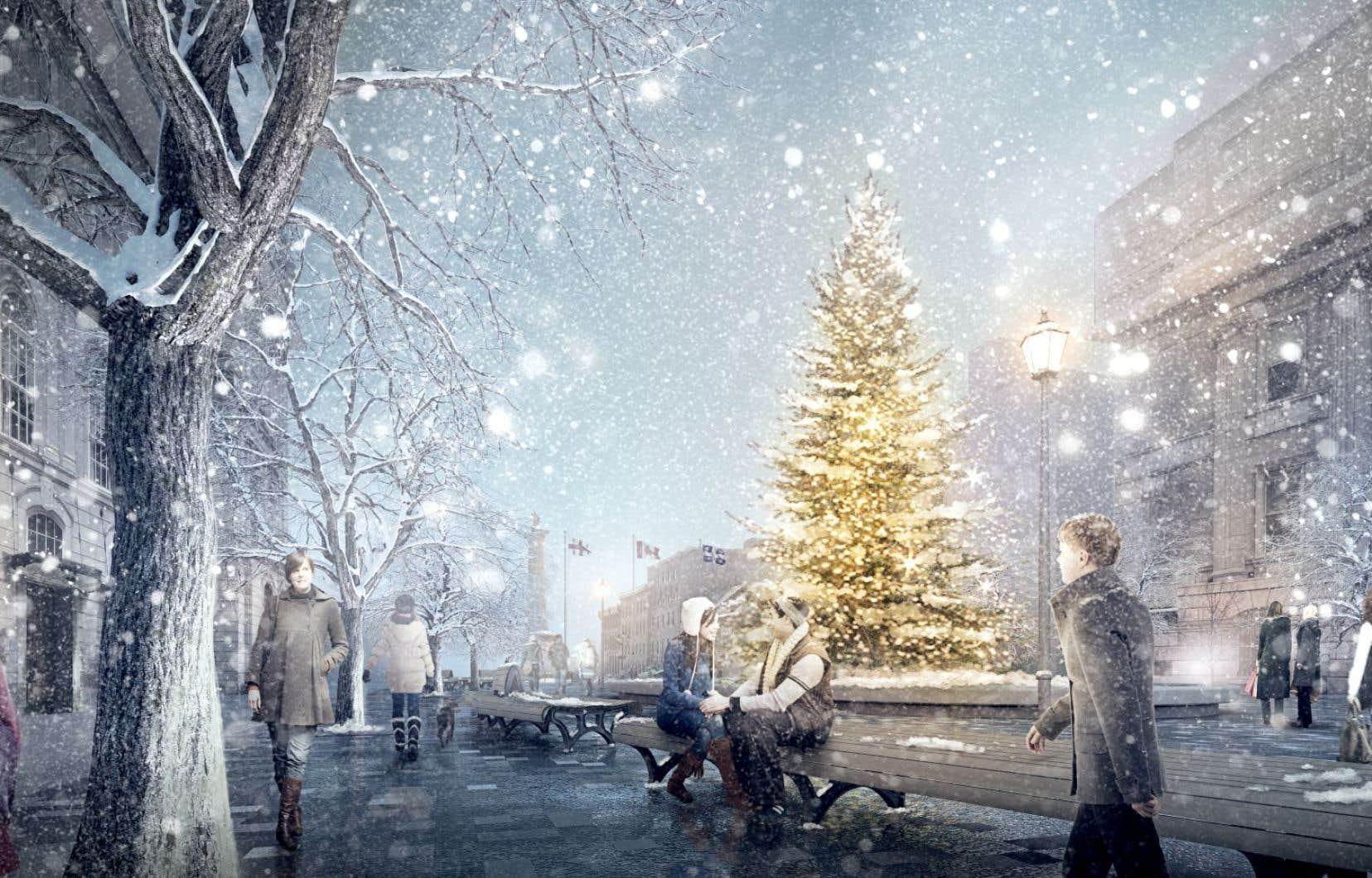 Montréal entend renouer avec une vieille tradition: celle du sapin de Noël, qui sera installé au centre de la place publique pendant la période des fêtes.