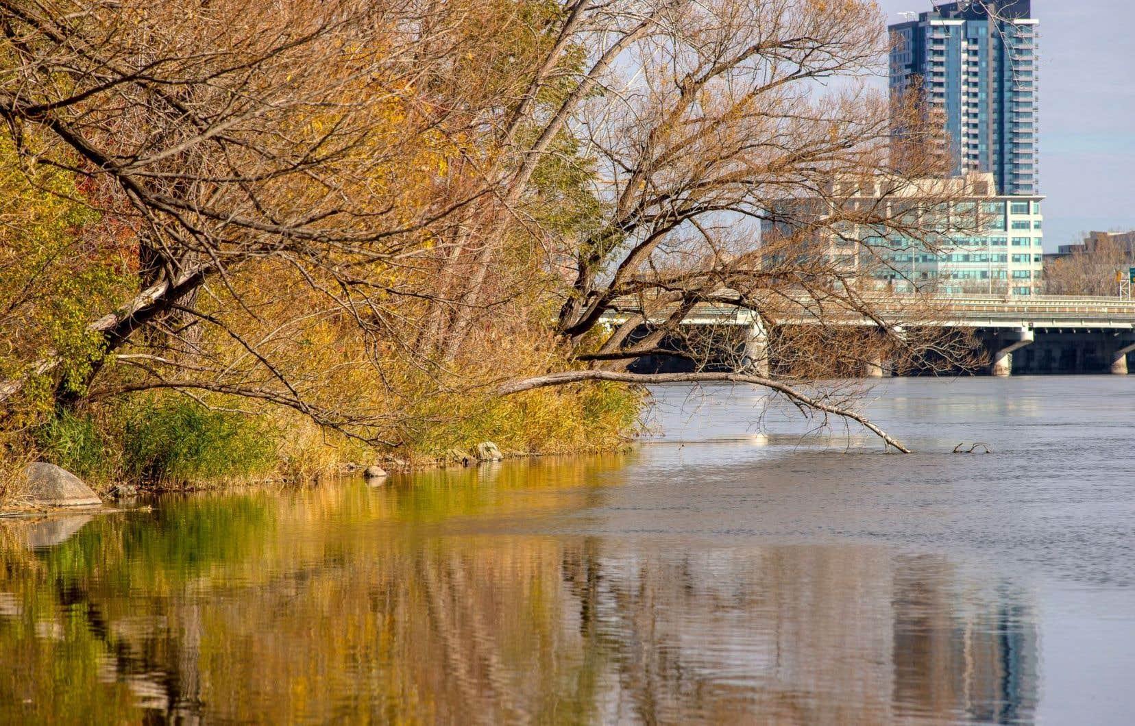 Environnement Canada a rendu public, vendredi après-midi, le rapport des trois experts mandatés par l'ex-ministre de l'Environnement Leona Aglukkaq.