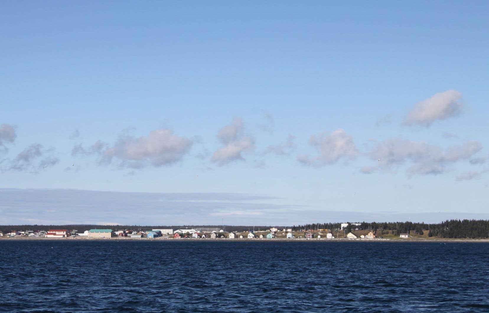 Parmi les documents pas encore publiés, pas moins de 10 études portent directement sur des enjeux environnementaux pour l'île d'Anticosti.