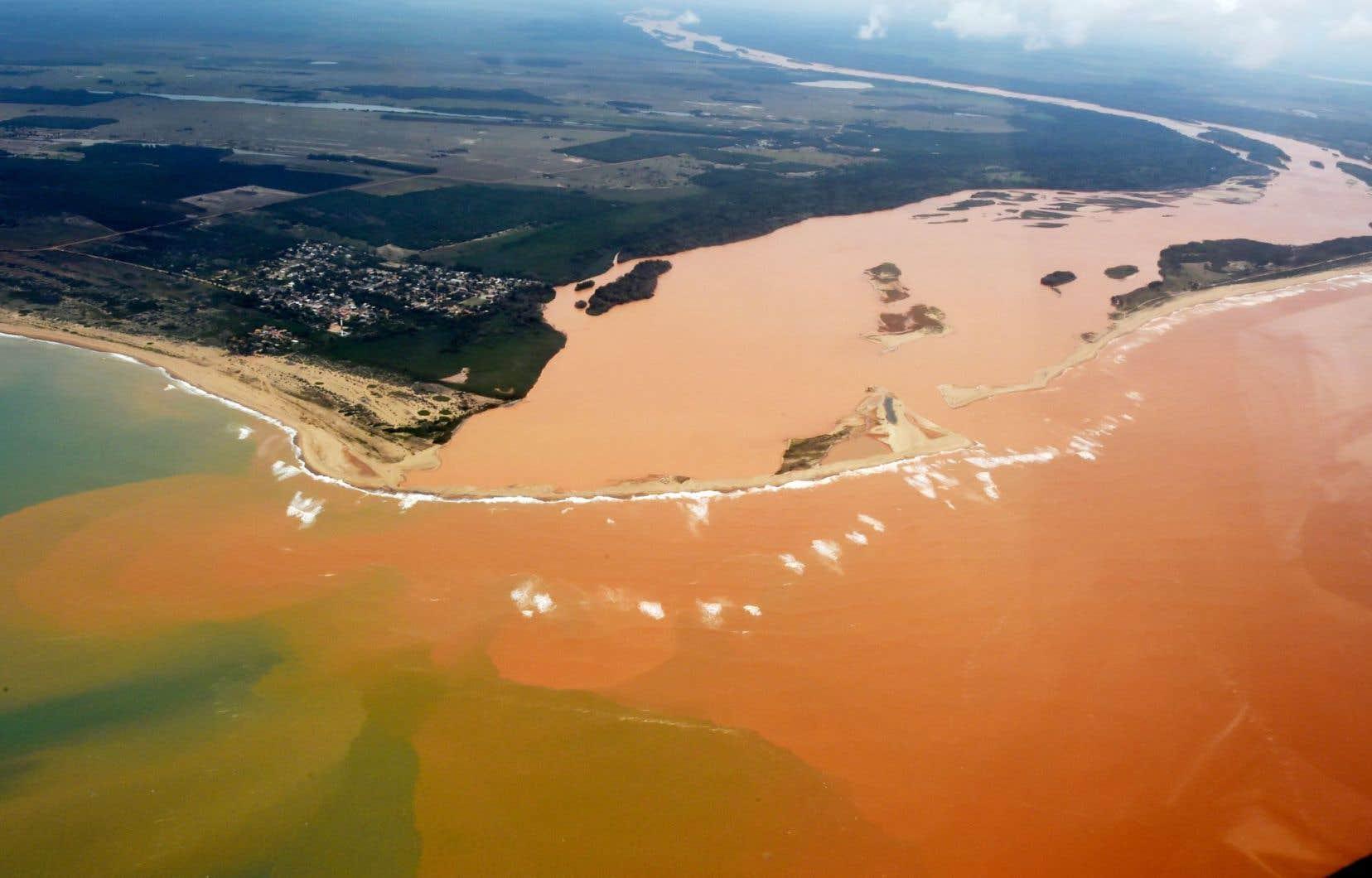La boue a englouti un village, faisant 13 morts, avant de se retrouver dans le fleuve Doce. Les analyses ont démontré la présence de plomb, d'arsenic, de nickel et de chrome.