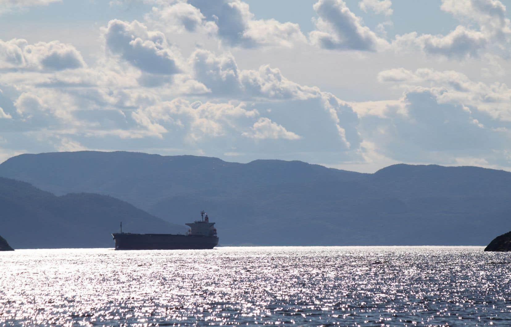 En naviguant sur le Saguenay, les navires qui chargeront le minerai traverseront le seul parc marin de la province, soit le parc marin du Saguenay–Saint-Laurent. Ils navigueront notamment en plein cœur de l'habitat essentiel du béluga, une espèce en voie de disparition.