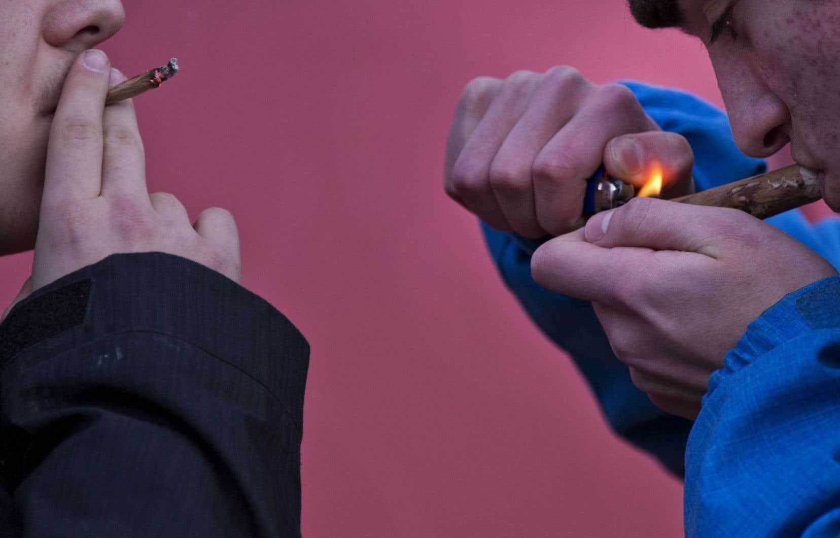 « C'est trop facile à trouver. Tu te promènes dans la rue et tu as juste à dire à quelqu'un qui fume : as-tu du pot ? » (un jeune de 16 ans)
