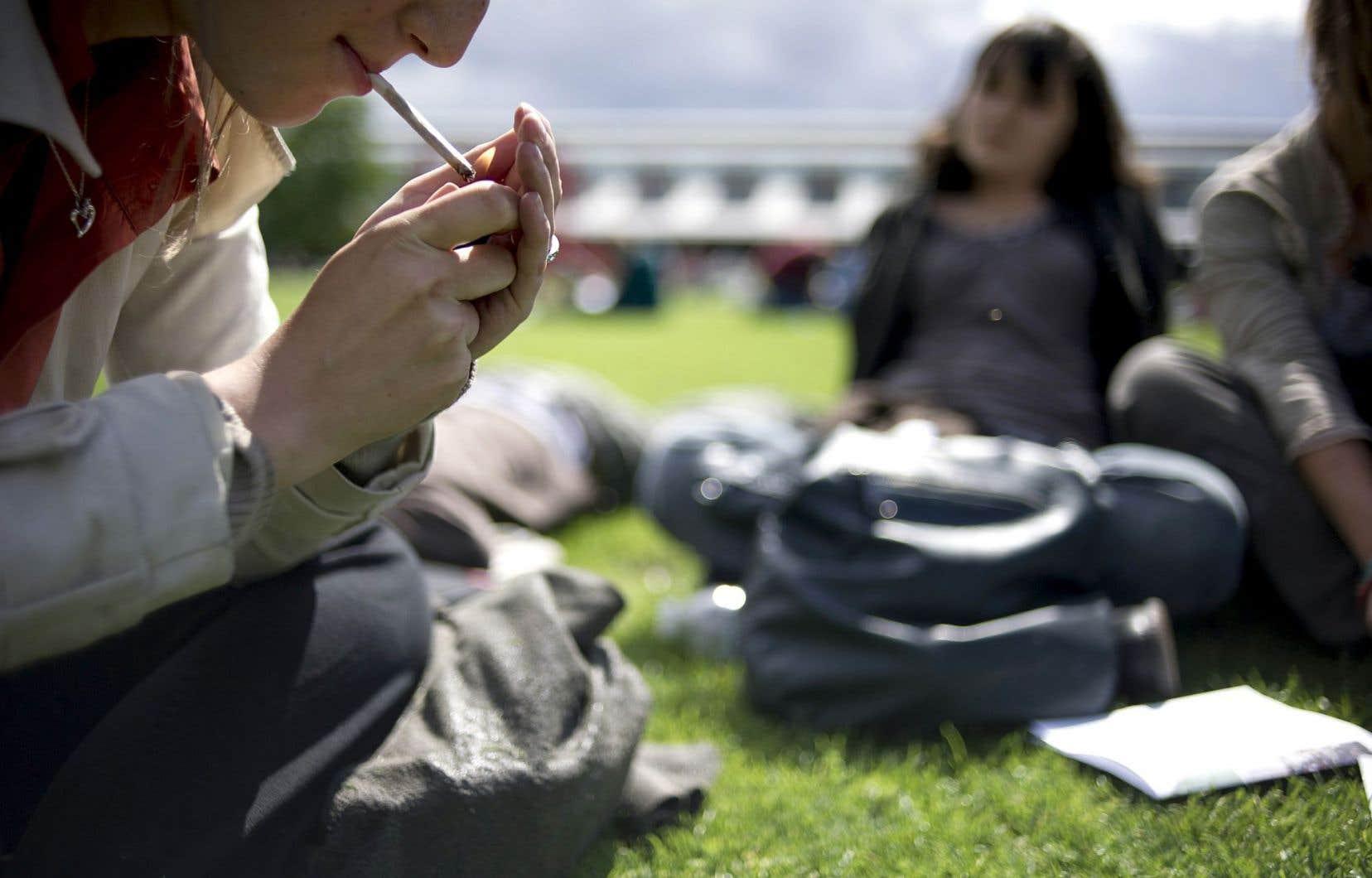 Ici comme en Europe de l'Ouest ou chez nos voisins du Sud, la consommation de drogues connaît une baisse.