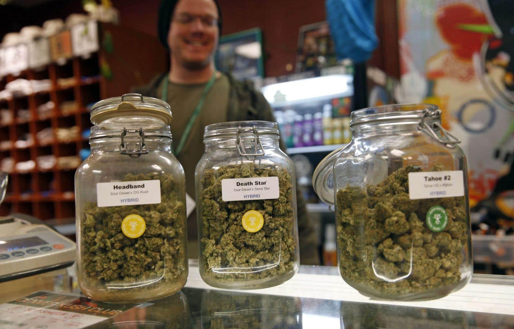 Des bocaux remplis de marijuana en vente au Colorado. Le choix des modalités de distribution au Québec est un débat prématuré, selon le ministre Leitão.