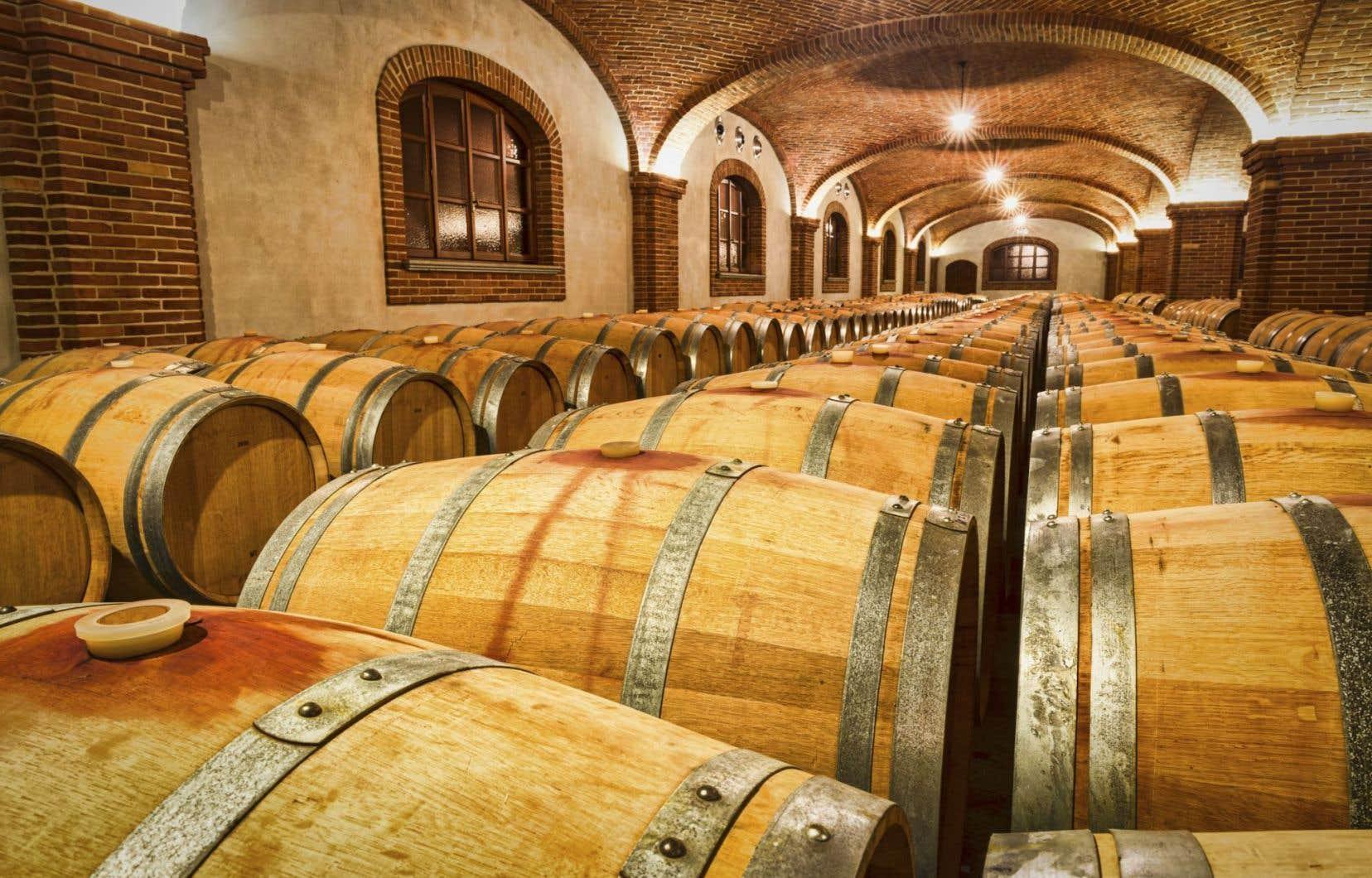 Selon un rapport présenté à Rome par la Coldiretti, la principale confédération italienne de cultivateurs, l'Italie est désormais le premier exportateur mondial de vin.