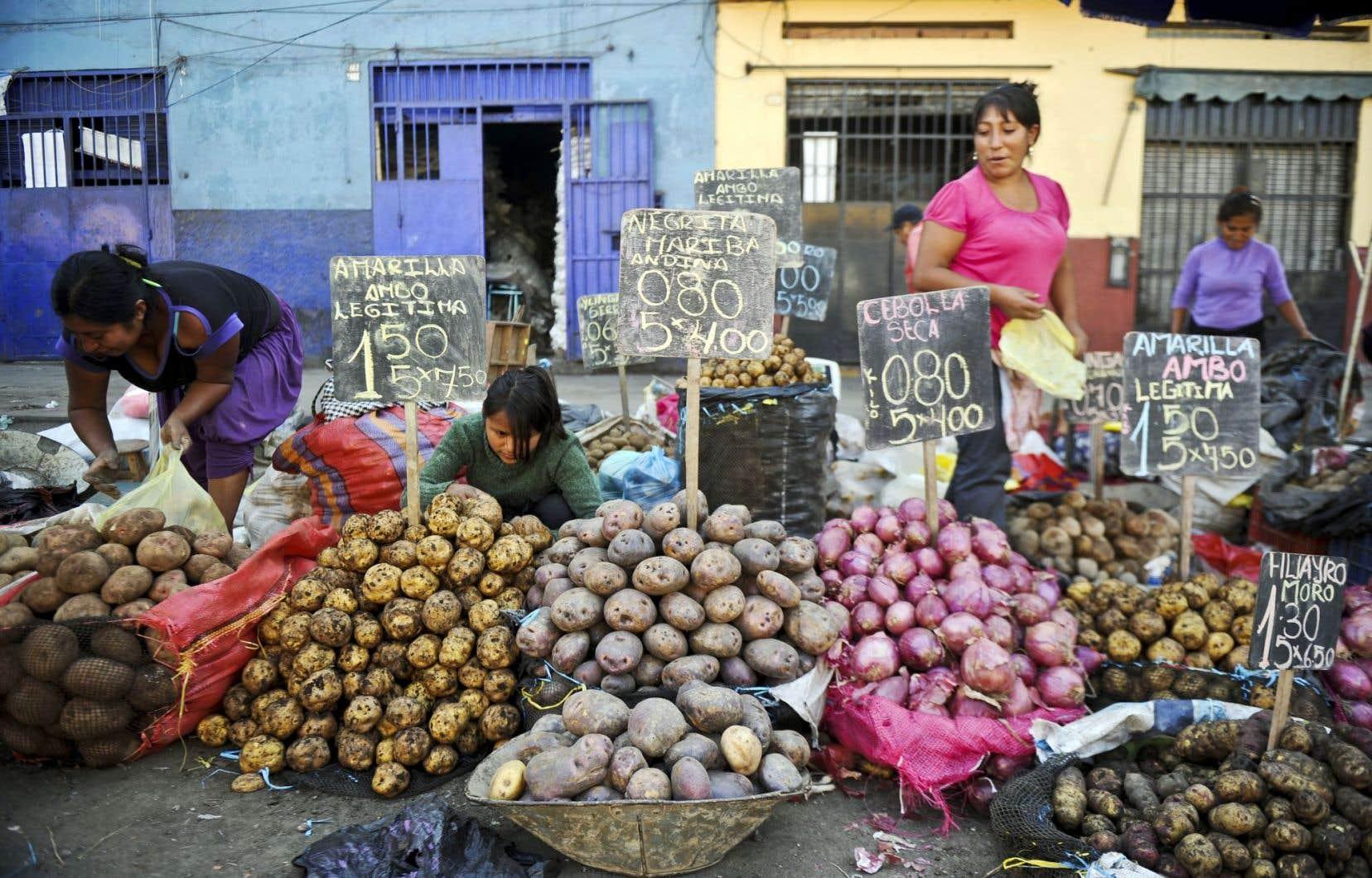Jour de marché à Lima, ville qui habite les pages d'«Étrangers de A à Z».
