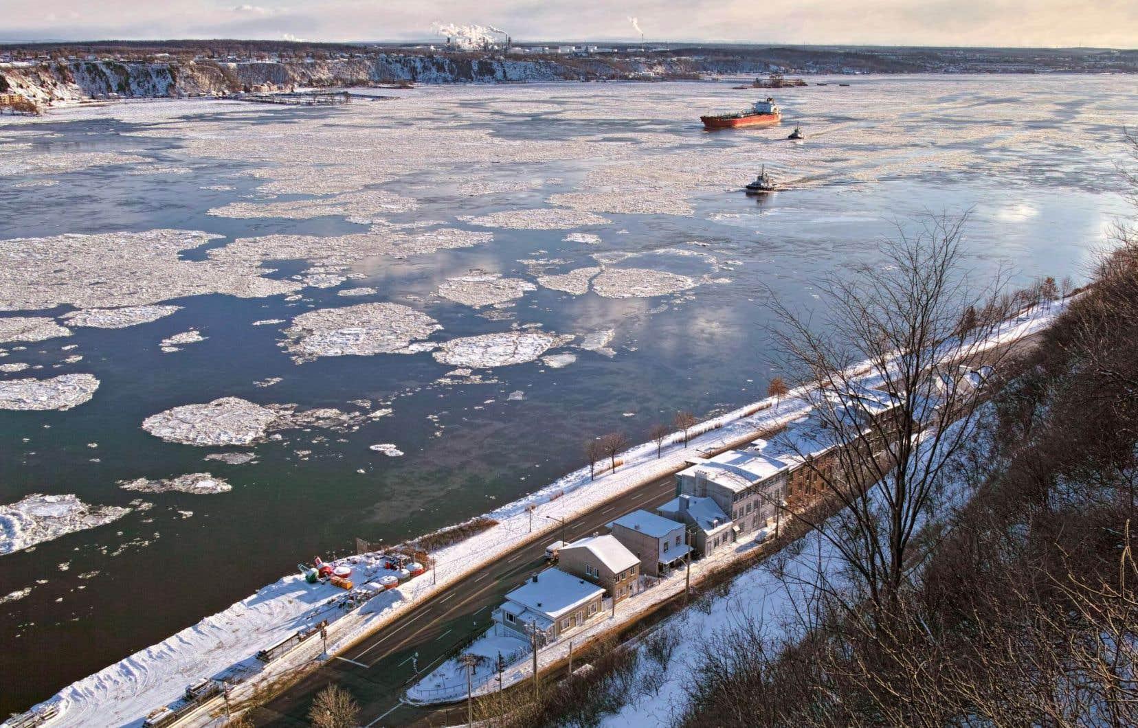 La plupart des études soulignent que TransCanada n'a pas suffisamment étudié les impacts du projet dans la région et particulièrement du passage du pipeline dans le fleuve entre Lévis et Saint-Augustin.