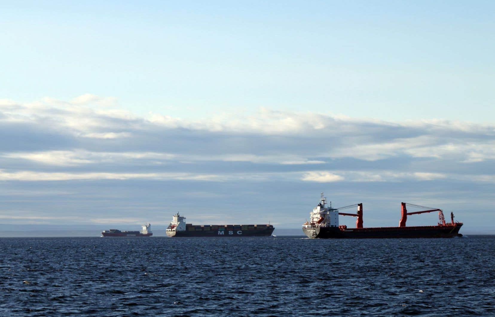 En raison des projets de transport de pétrole et de gaz en développement, on devrait assister à une croissance du trafic d'énergies fossiles sur le Saint-Laurent.
