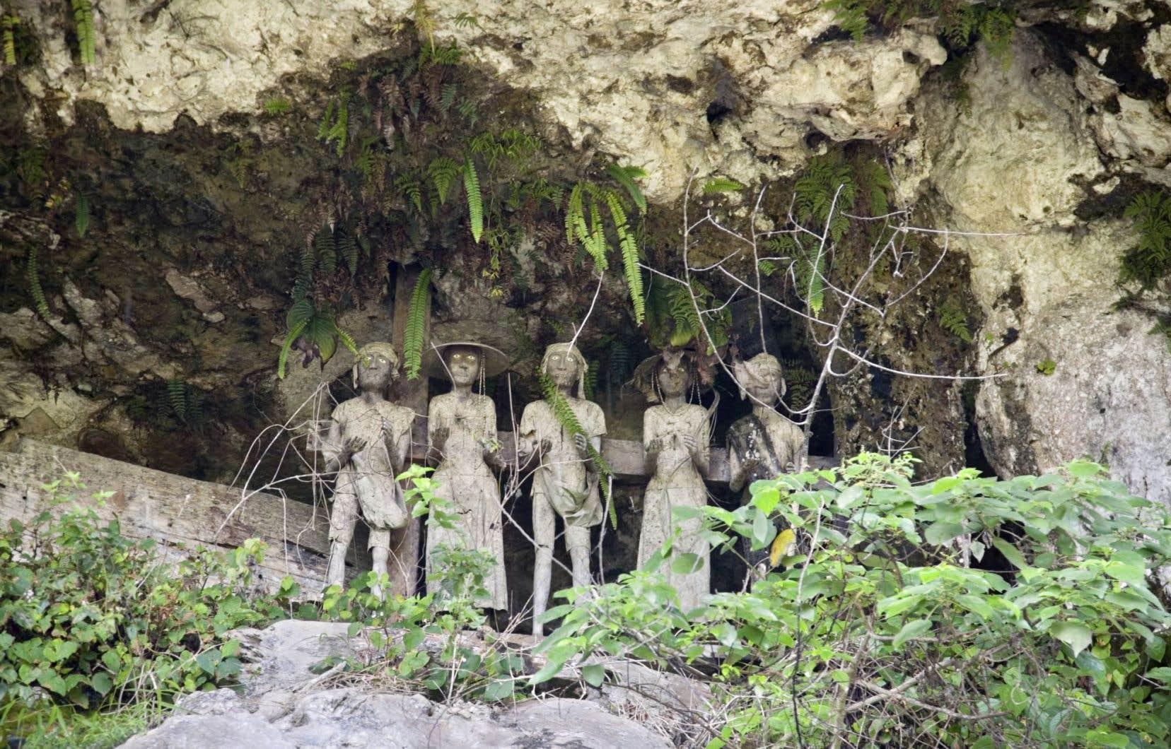 Le narrateur est fasciné par les étranges rites funéraires des Toraja.