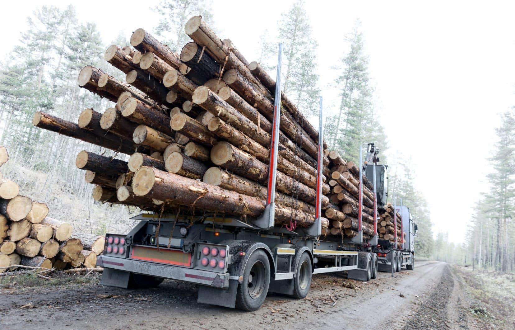 Les secteurs qui en profiteraient le plus au Canada seraient ceux de l'agroalimentaire (dont les viandes de boeuf et de porc), des produits du bois, du matériel de transport et des services financiers et aux entreprises.