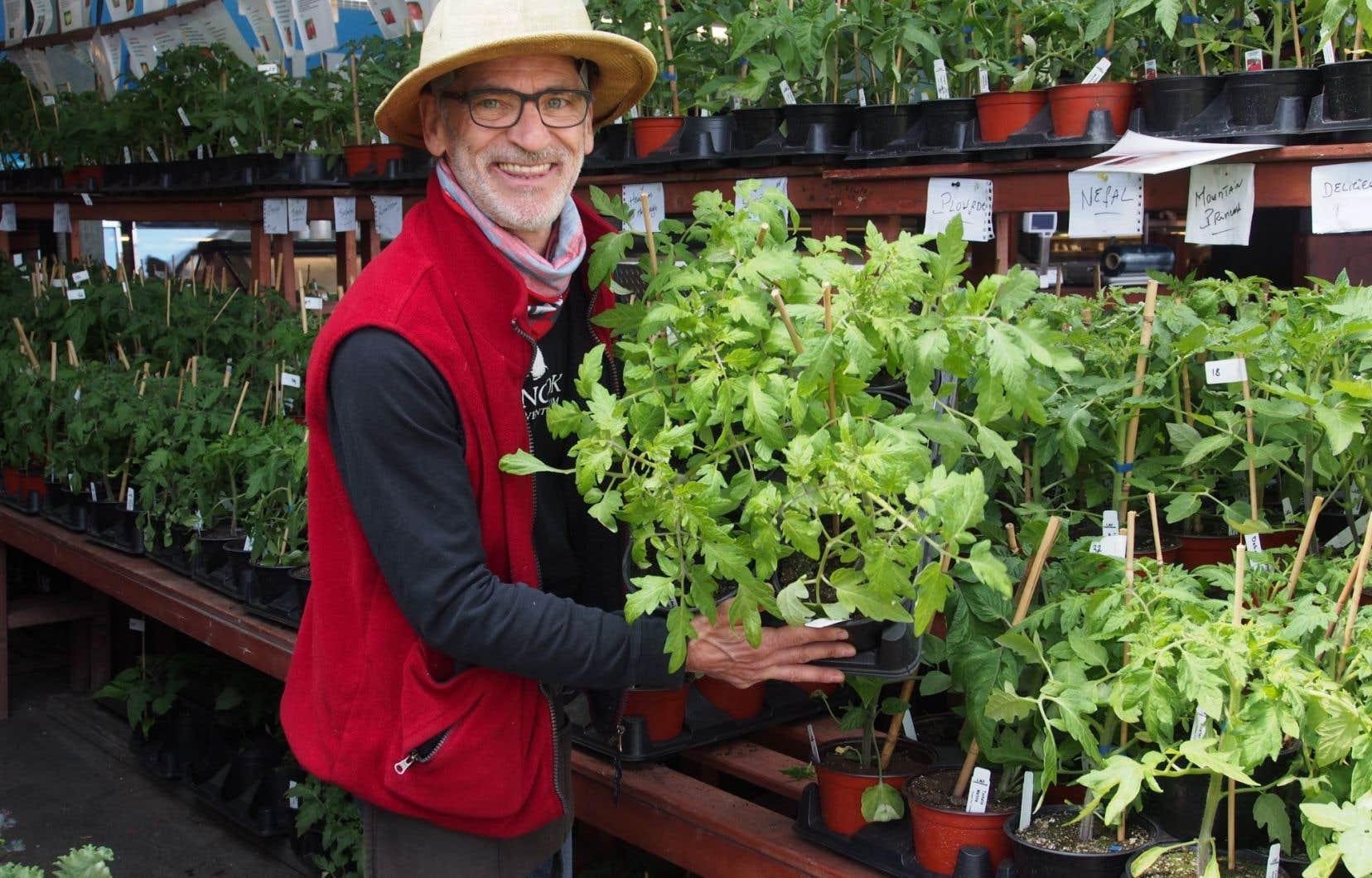 Planter Des Tomates En Pot monsieur tomates» | le devoir