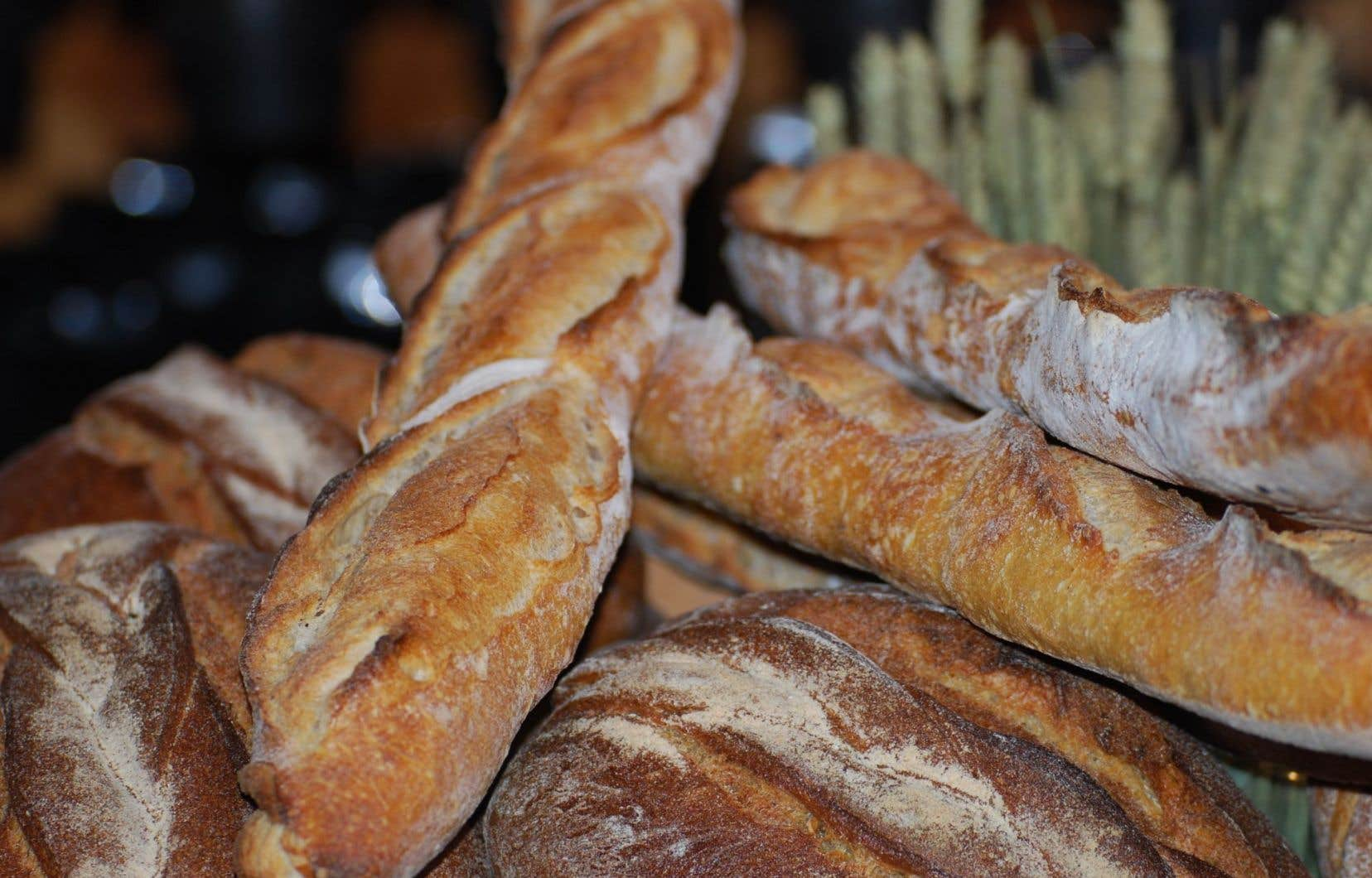 Bon an, mal an, le bon pain est un aliment redevenu à la mode.