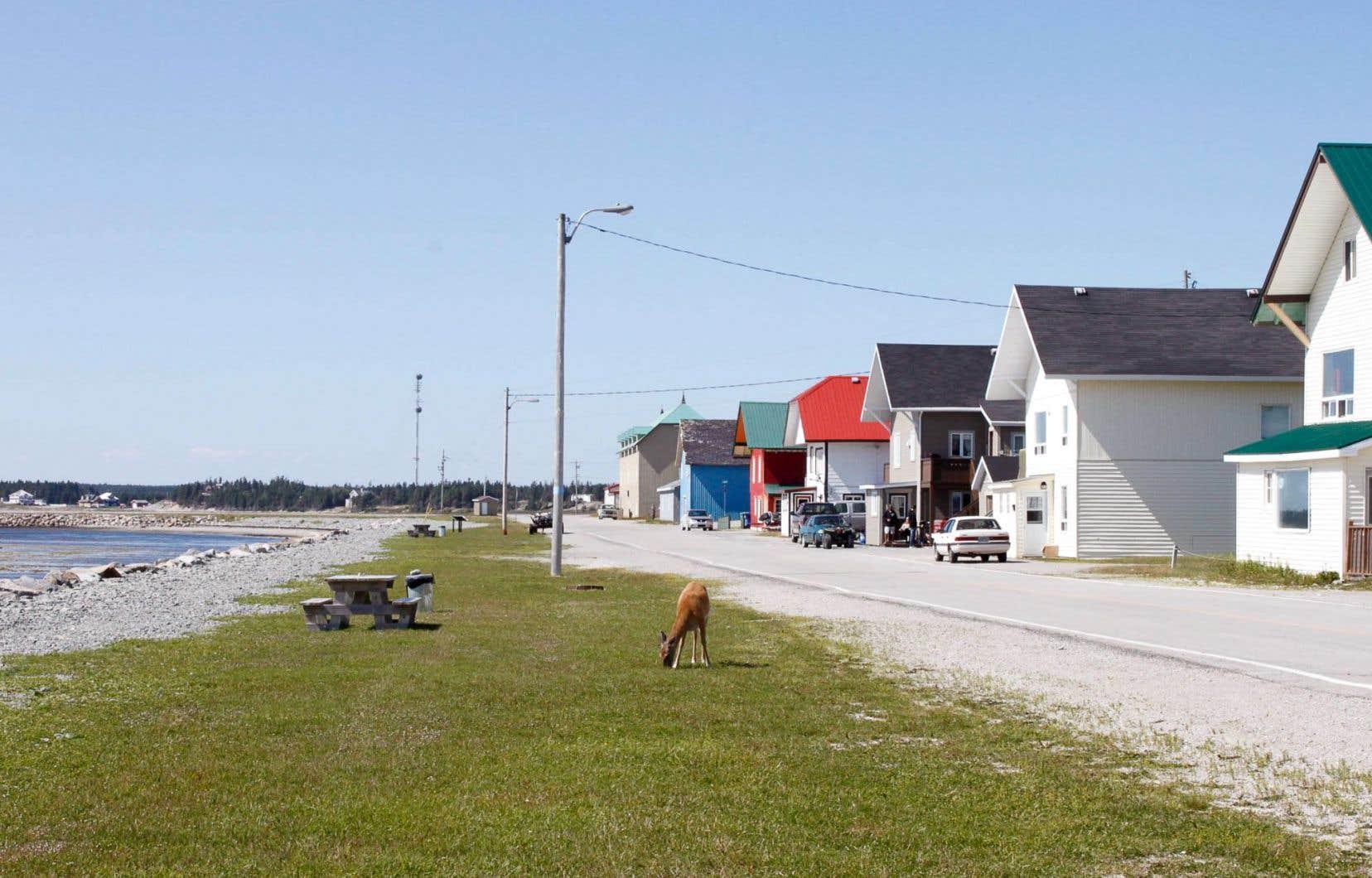 Tant les Innus que les élus régionaux critiquent à la fois le gouvernement du Québec et l'entreprise Pétrolia, qui veulent exploiter le potentiel énergétique de la région.