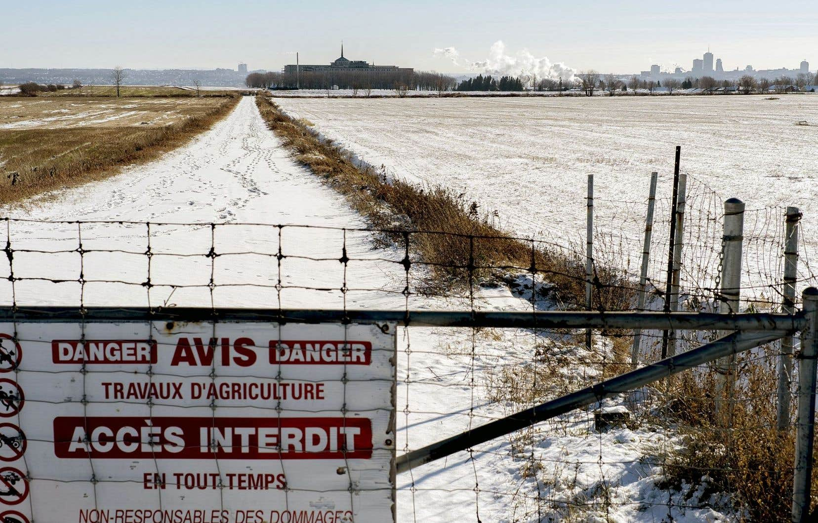 Les terres agricoles des Sœurs de la Charité ont été vendues au Groupe Dallaire. Elles auraient pu devenir le cœur nourricier de la ville.